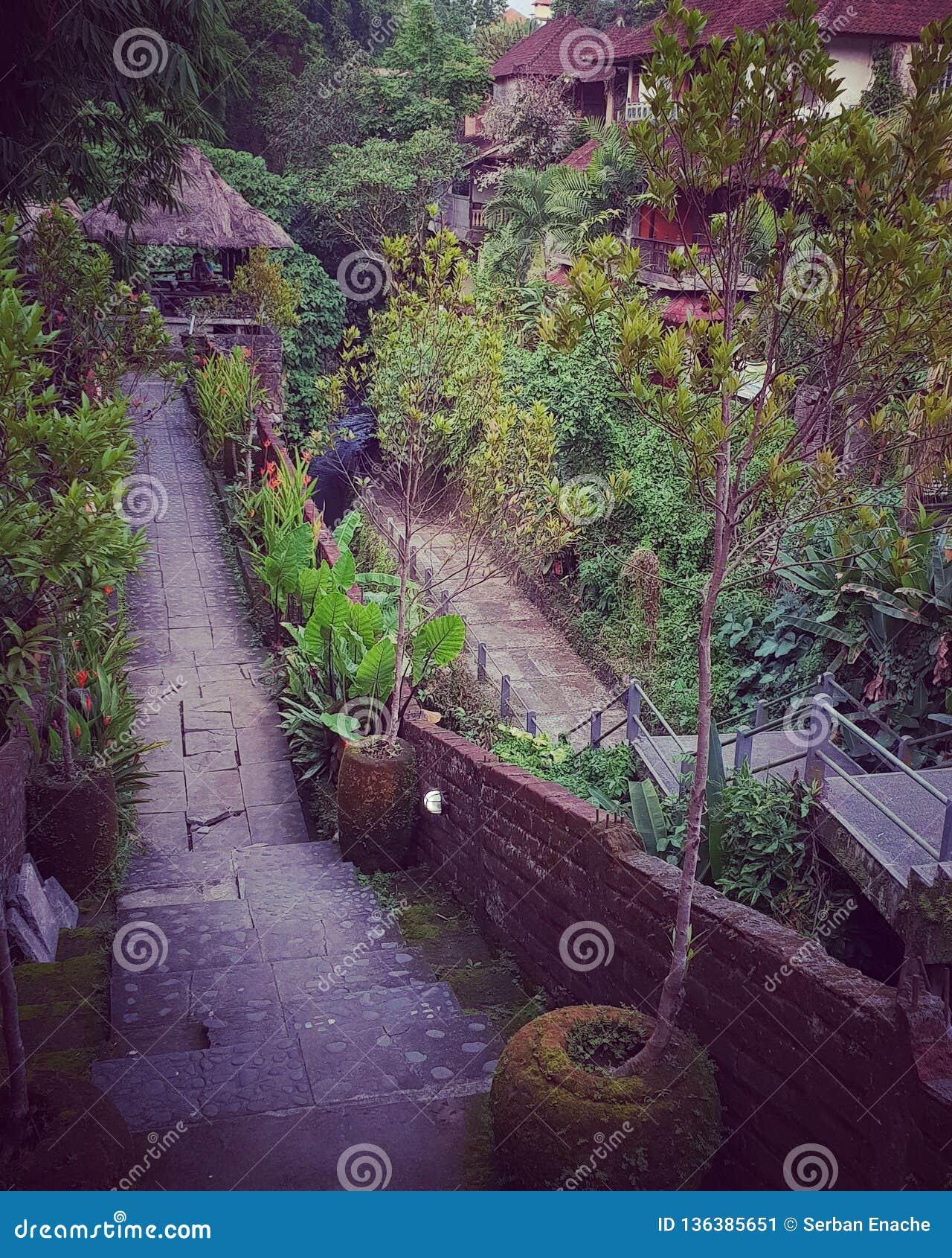 Nadbrzeże rzeki przejście, Ubud, Bali