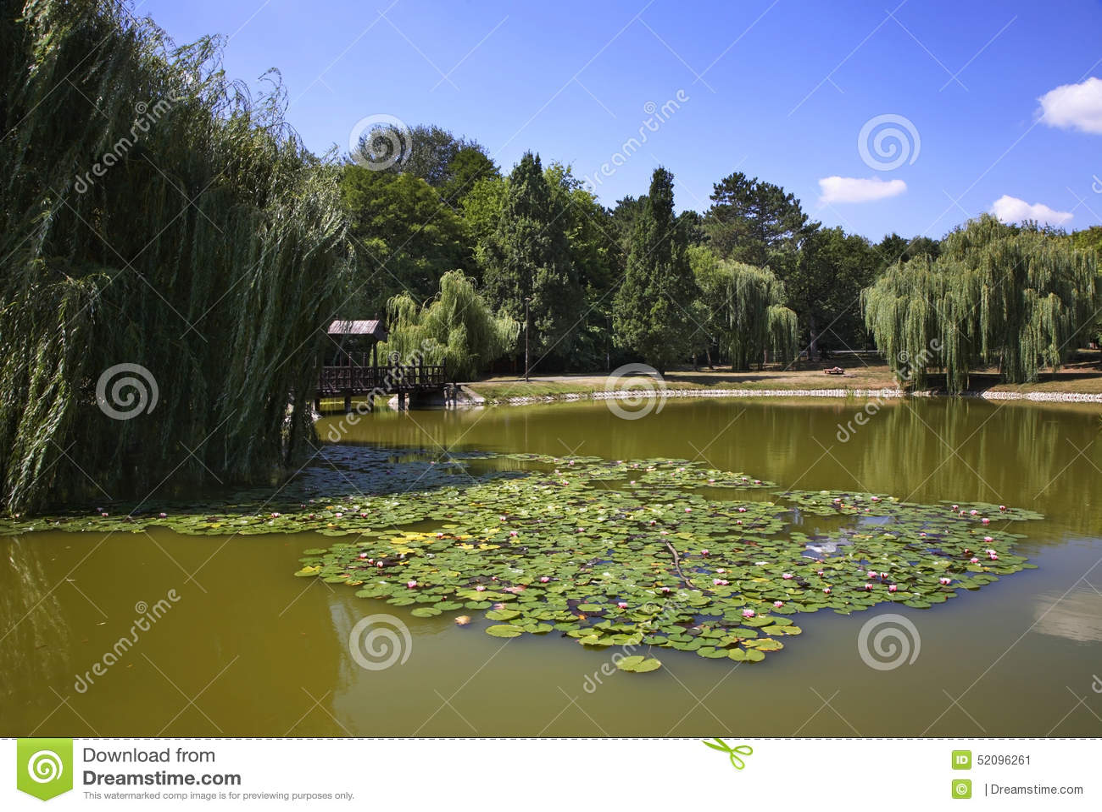 Naderdepark in Debrecen hongarije