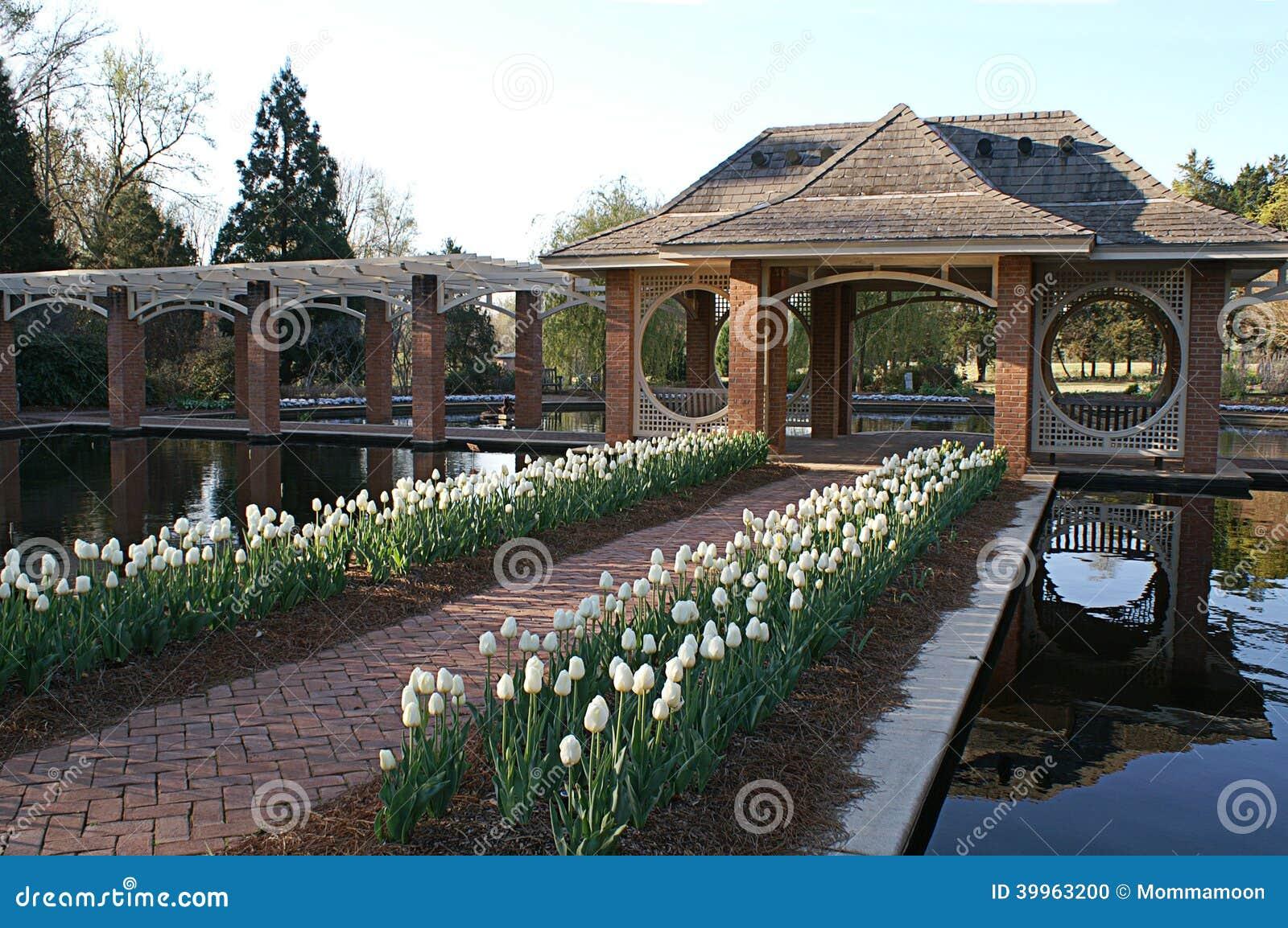 Nadwodny ogród