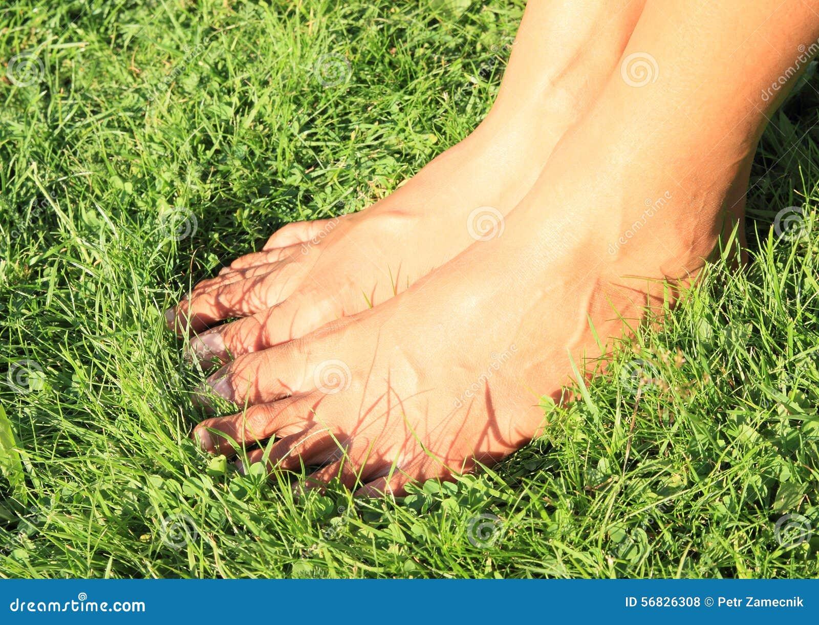 Nadzy cieki na trawie