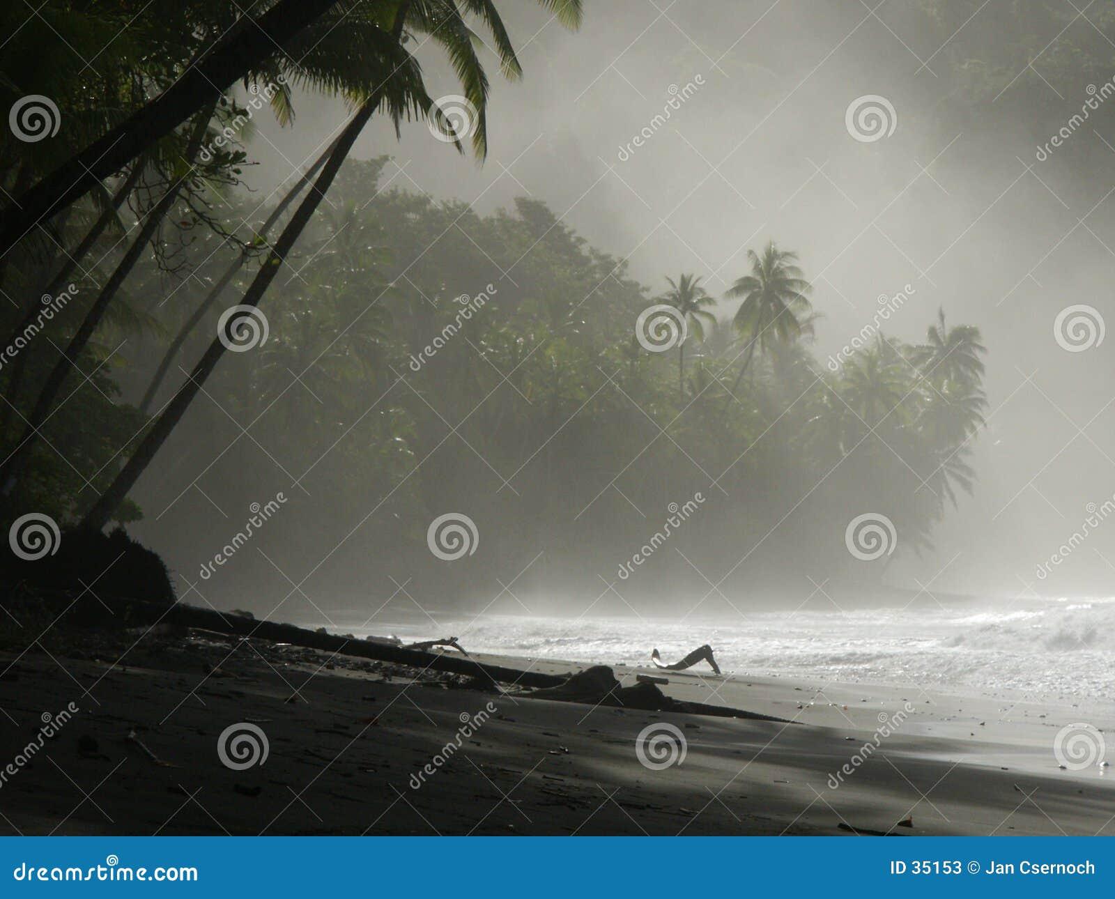 Nahaufnahme des Strandes