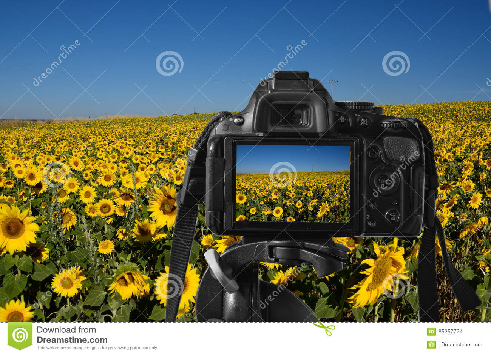 Nahaufnahme einer Digitalkamera mit einem bunten stellen sich auf der Live-ansicht vor