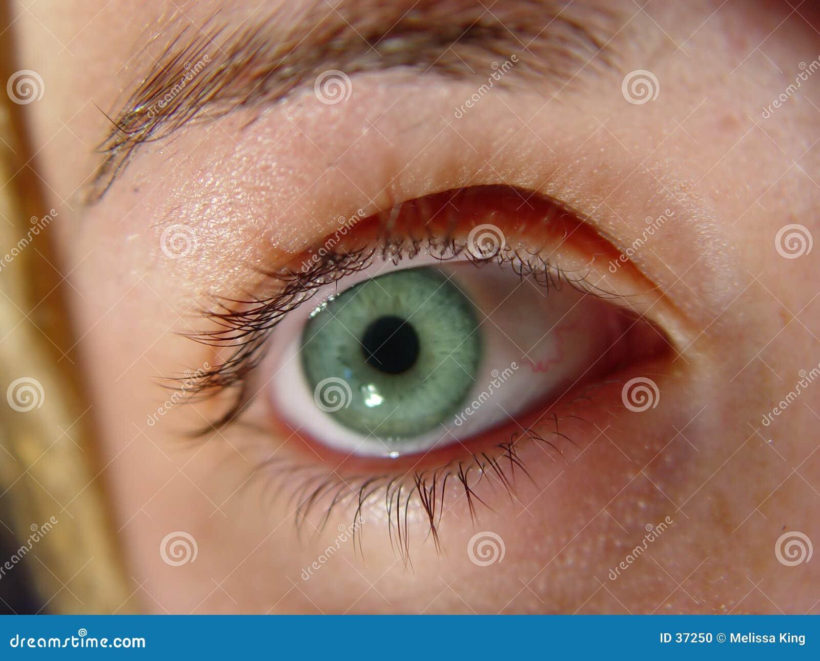 Nahaufnahme-grünes Auge