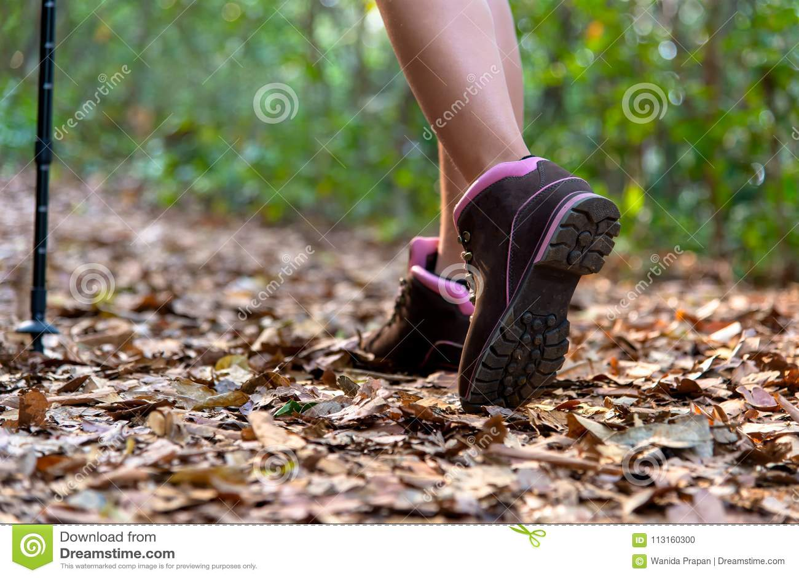 Nahaufnahme von weiblichen Wandererfüßen und Schuh, der auf Schneise geht
