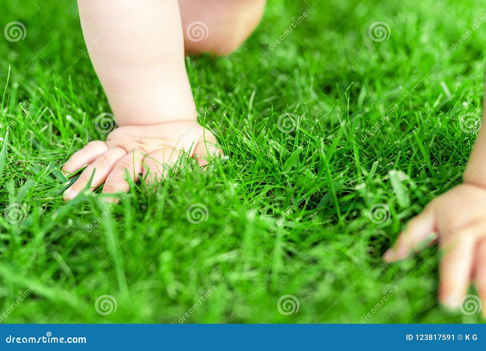 Nahaufnahmebaby, das durch Rasen des grünen Grases crowling ist Führt die Säuglingshand einzeln auf, die in Park geht Kinderentde