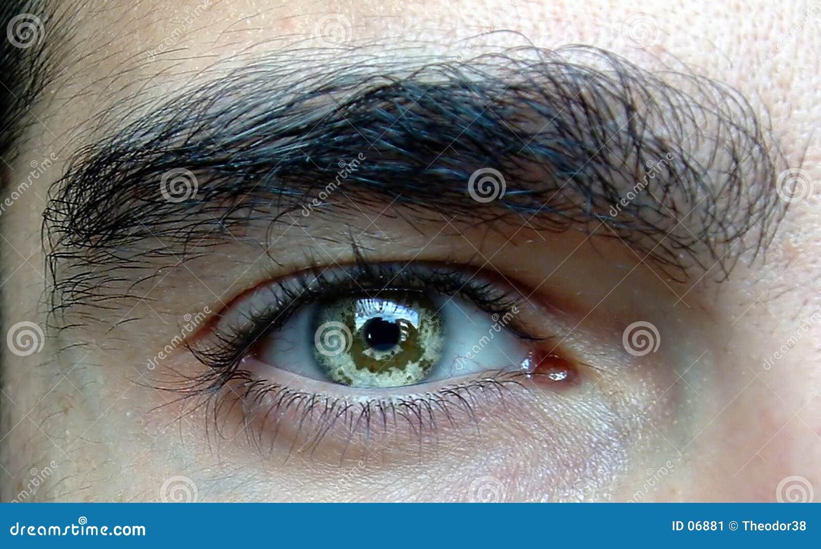 Nahes hohes des Auges