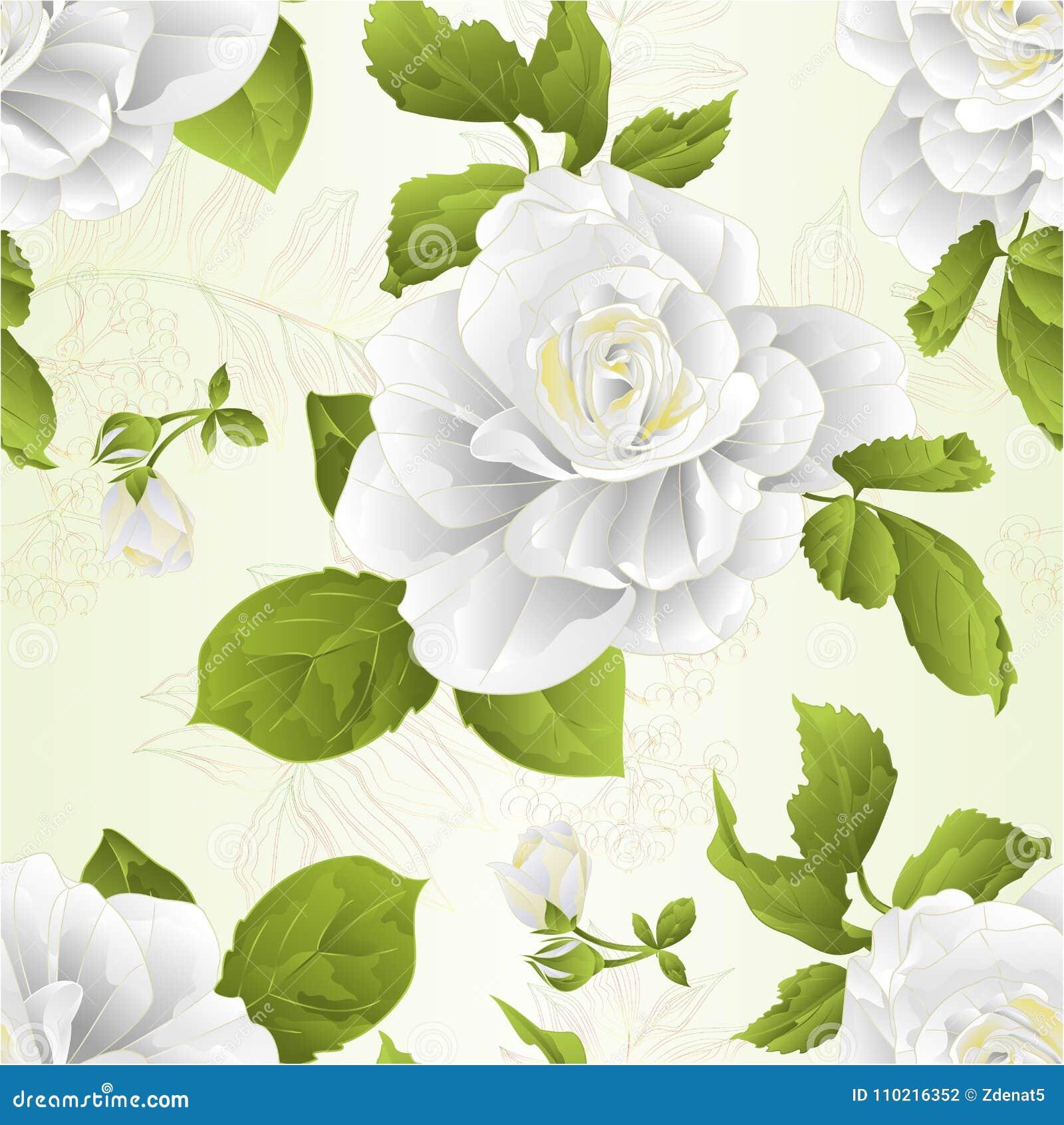 Nahtlose Beschaffenheitsstammblumen-Weißrose und natürlicher Hintergrund der Blattweinlese vector die editable Illustration