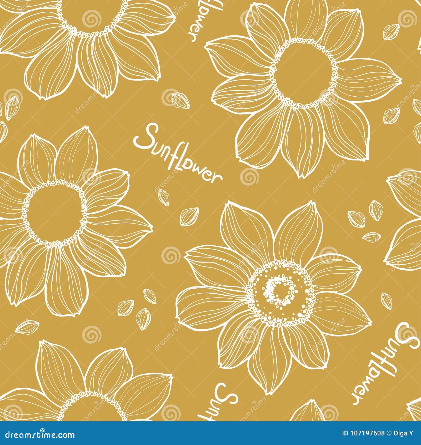 Nahtlose Sonnenblumenbeschaffenheit Weiße Vektorhand gezeichnet