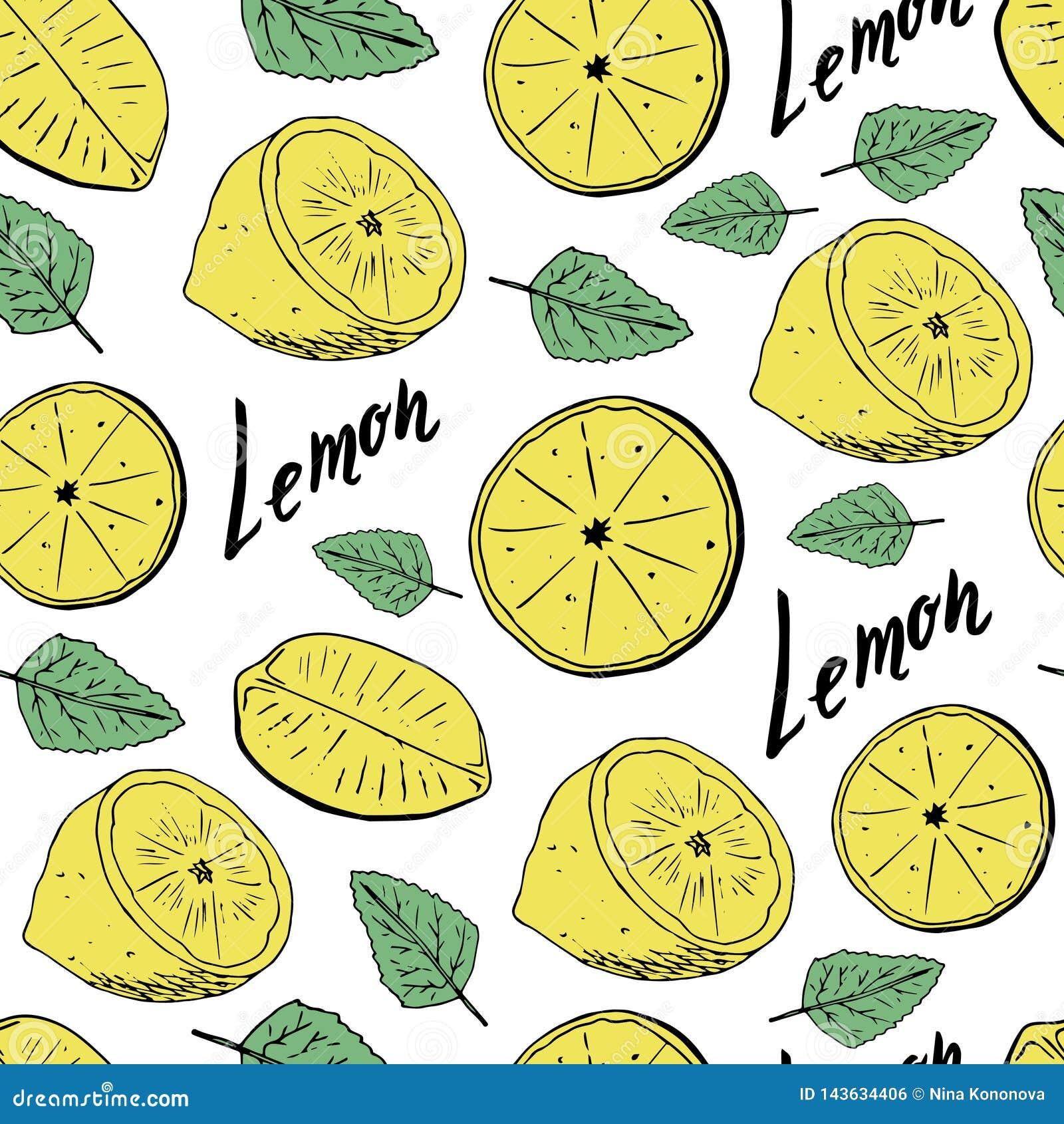 Nahtloses Muster des Handabgehobenen betrages von Zitronen mit Blättern Auch im corel abgehobenen Betrag