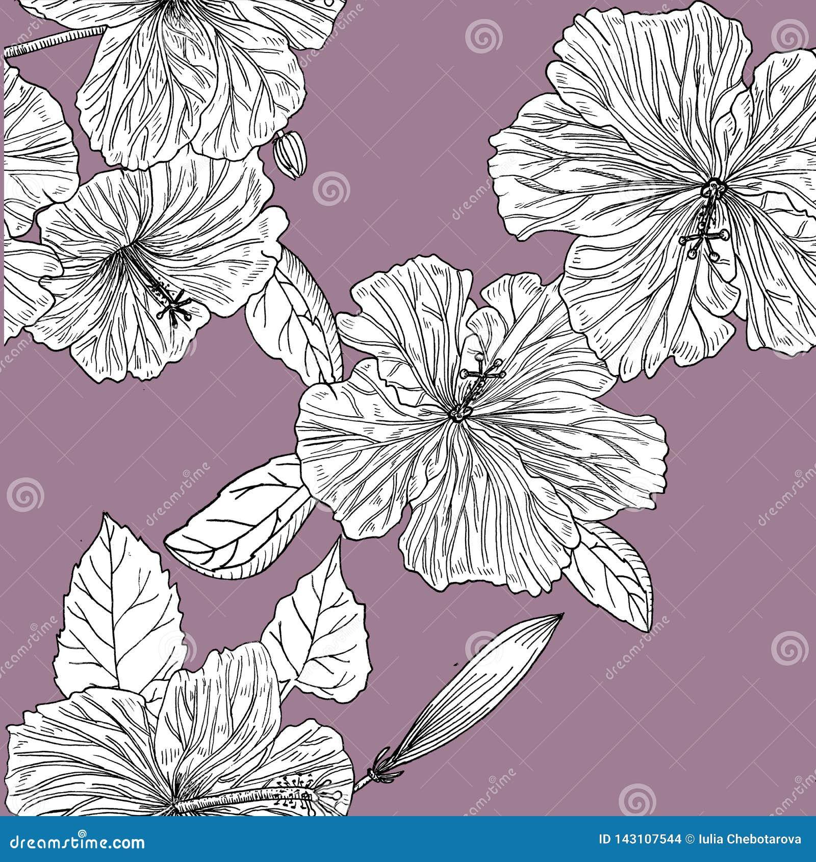 Nahtloses Muster mit Hibiscus Hand gezeichnet graphiken