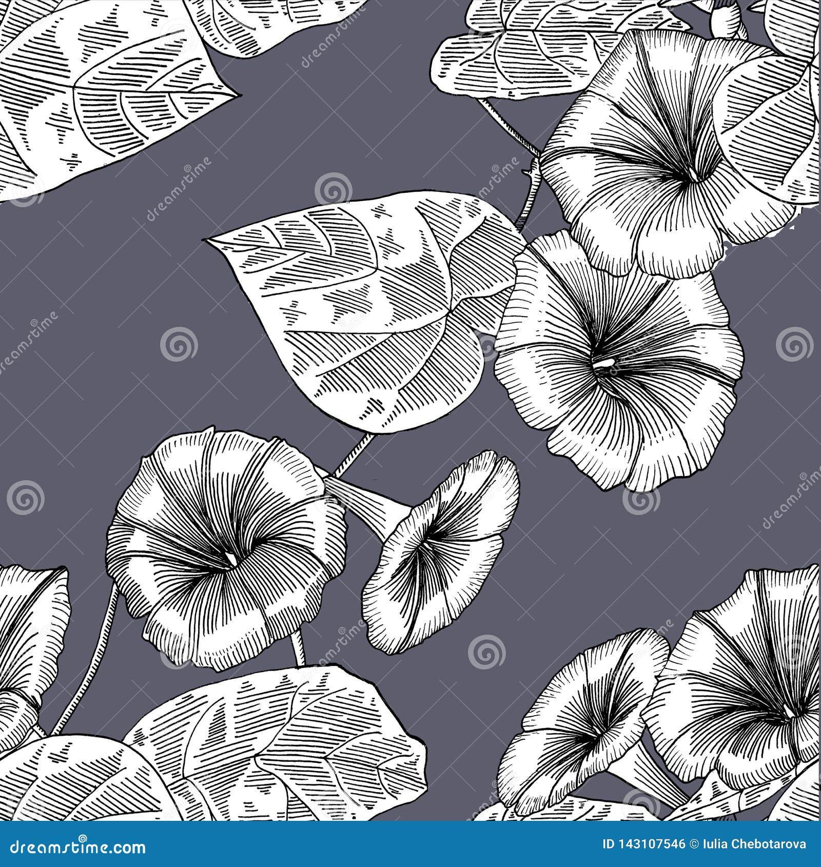 Nahtloses Muster mit Winde Hand gezeichnet graphiken