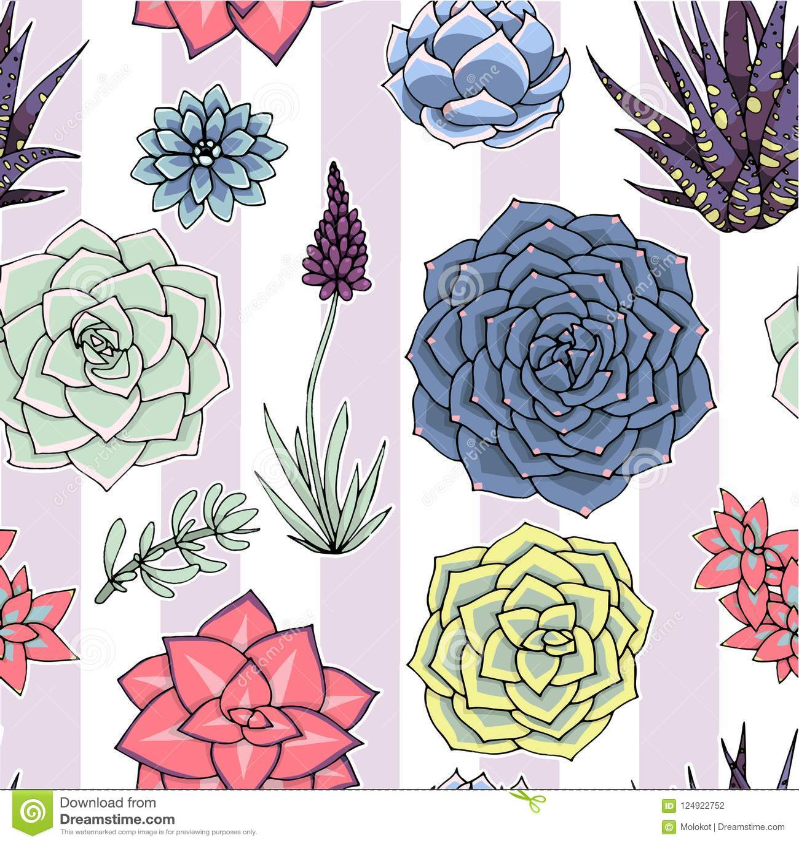 Nahtloses Muster Vektor Succulents Saftige Verzierung frech