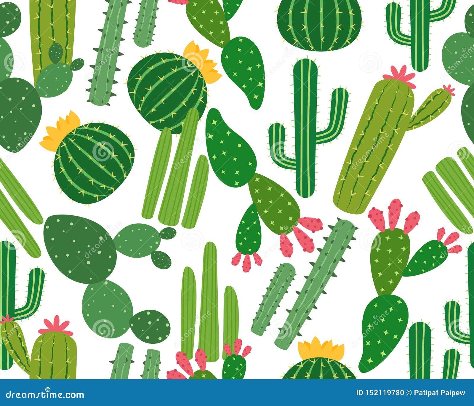 Nahtloses Muster von vielen Kaktus lokalisiert auf weißem Hintergrund
