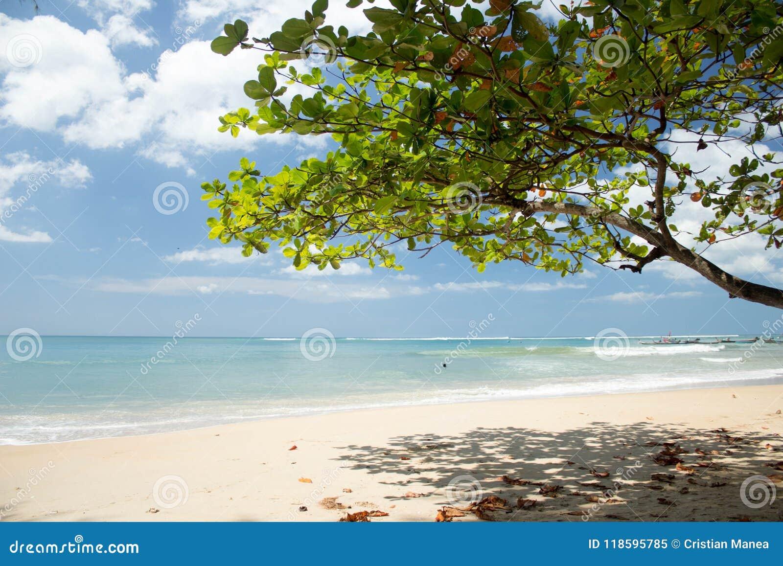 NAI YANG Beach i den Phuket ön, Thailand-3