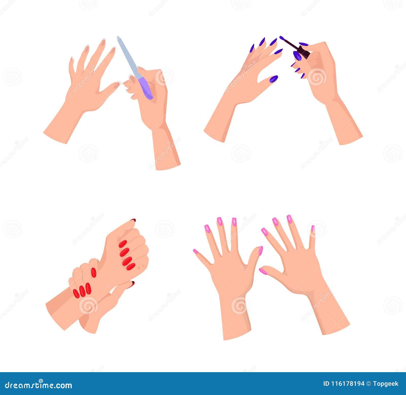 nail art hands and polish vector illustration stock vector