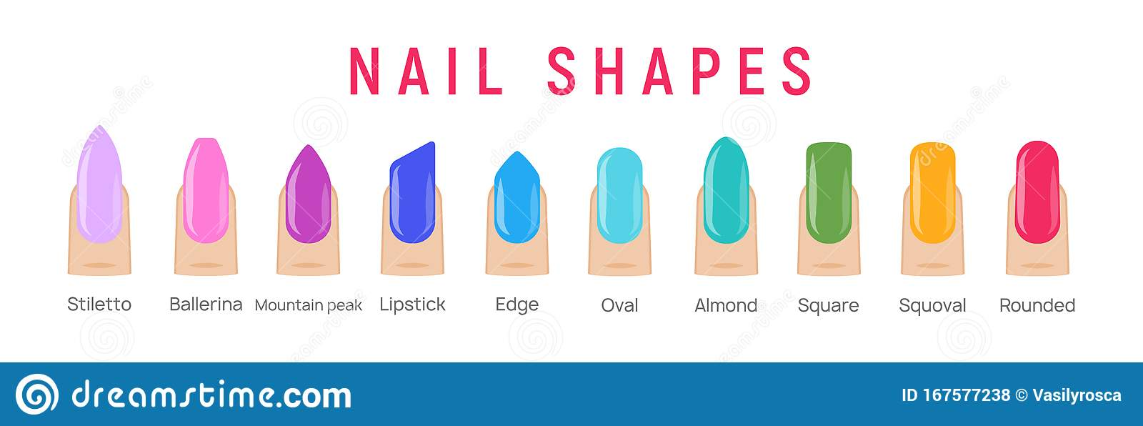 Nail Shapes Manicure Vector Art Fingernail Shape French Form Design Fashion Salon Stock Vector Illustration Of Girl French 167577238