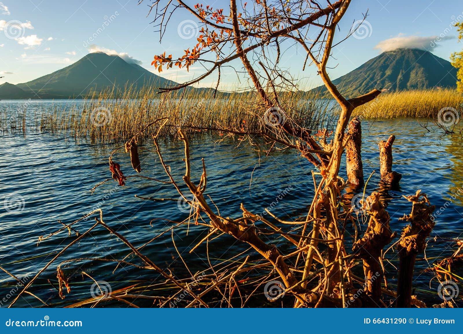 pics Nais Lago