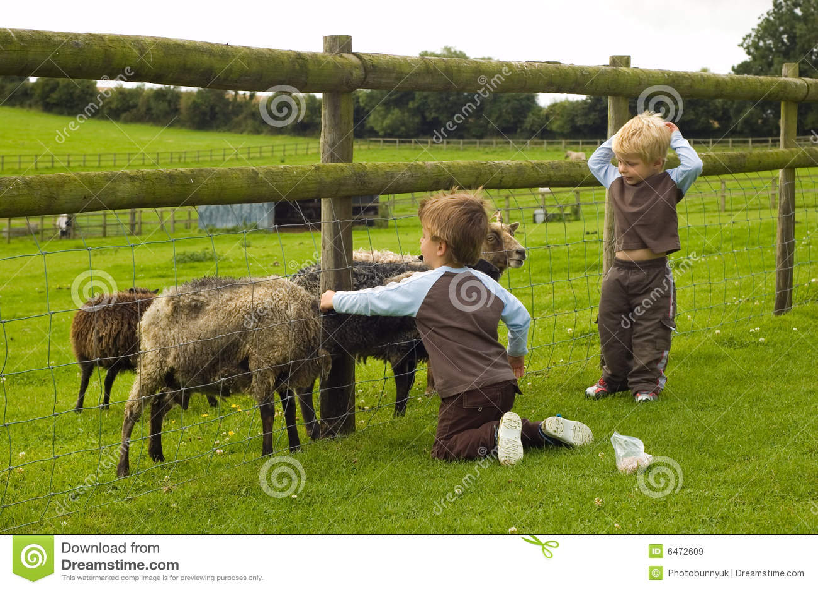 Nakarm kozy dzieci