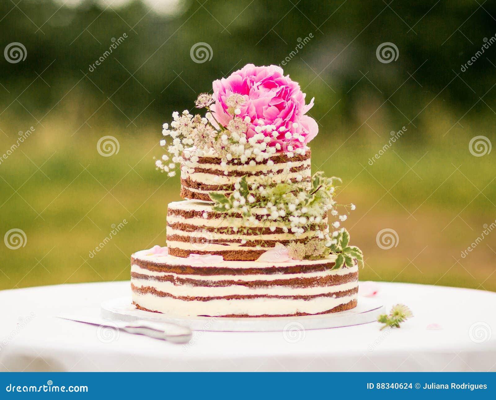 Naked cake stock photo. Image of decoration, cream, holidays - 88340624