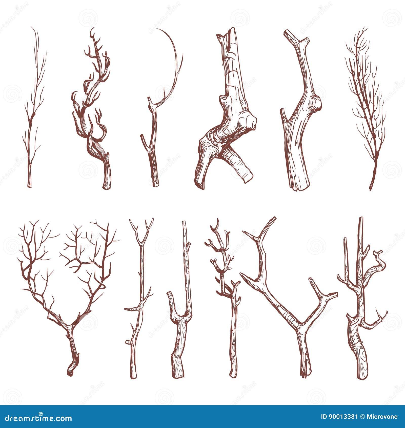 Nakreślenie drewniane gałązki, łamający gałąź wektoru set