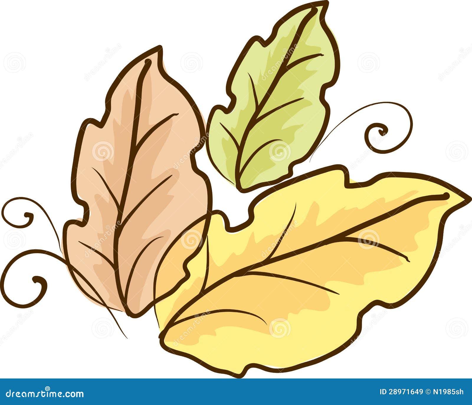 Nakreślenie kolorów liście