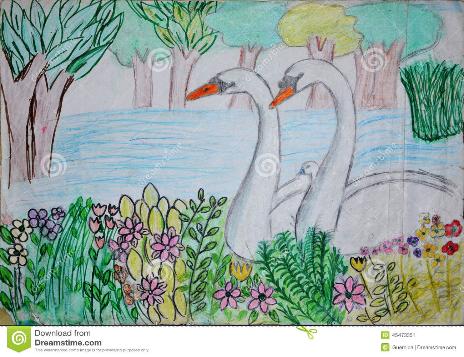 Nakreslenie Rysunek Labedzi Jezioro Ilustracji Ilustracja Zlozonej Z Kresk Temu 45473351