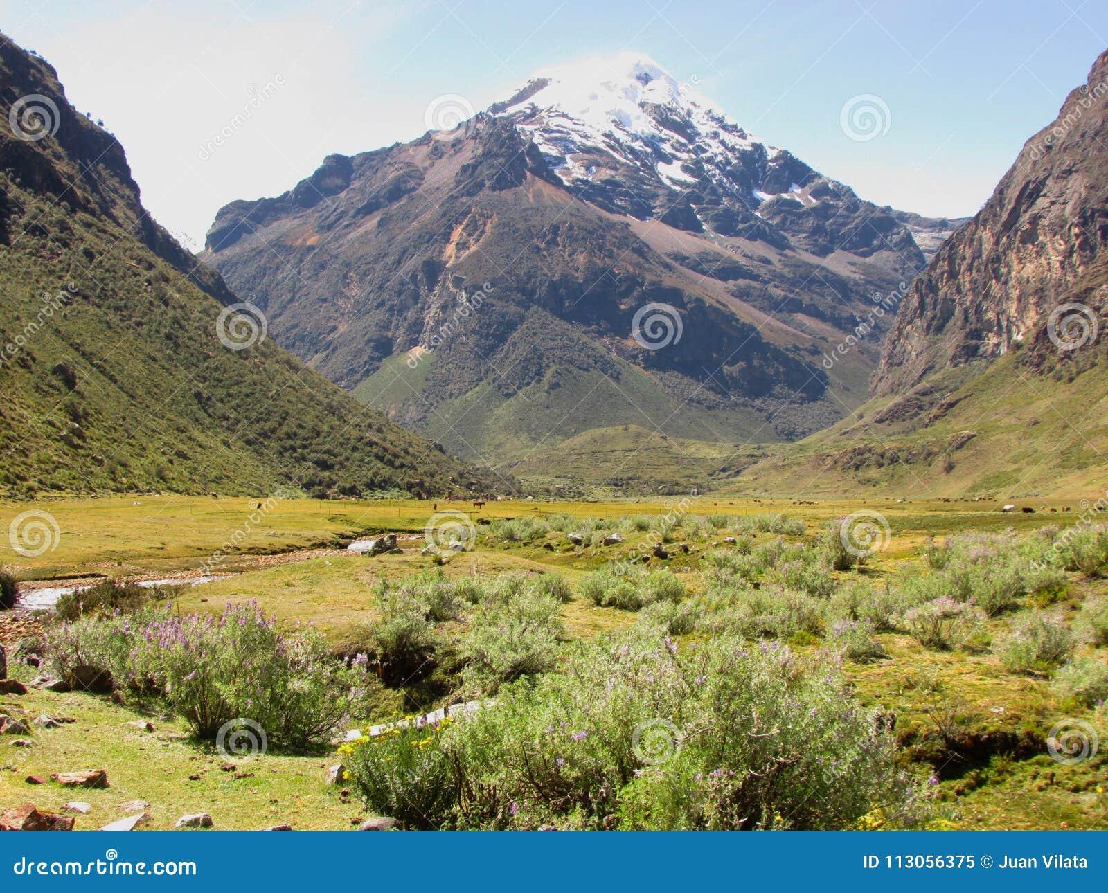 Nakrywający szczyty w Huascaran parku narodowym, Peru