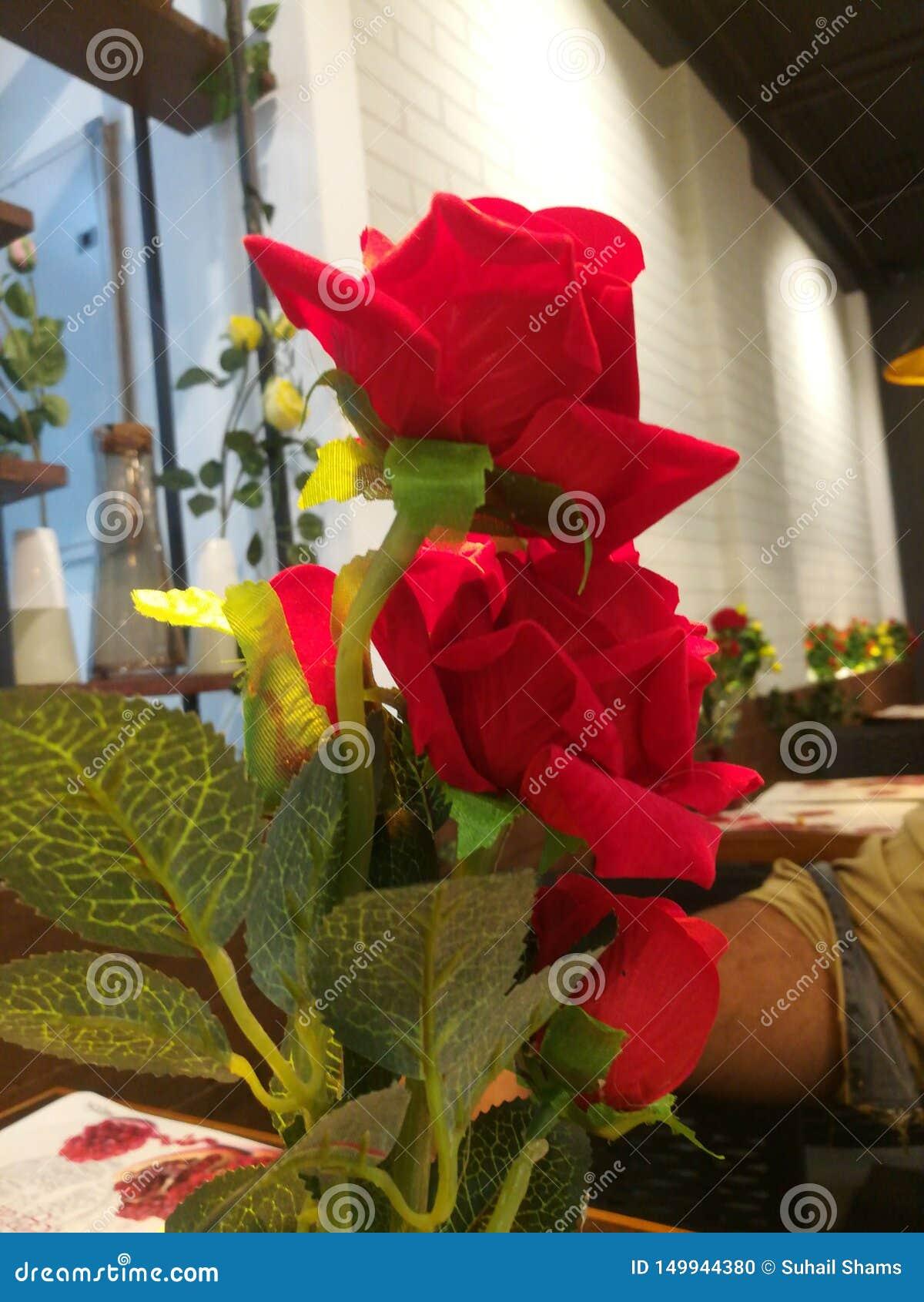 Nam bloem bij de winkel van de koffiekoffie toe