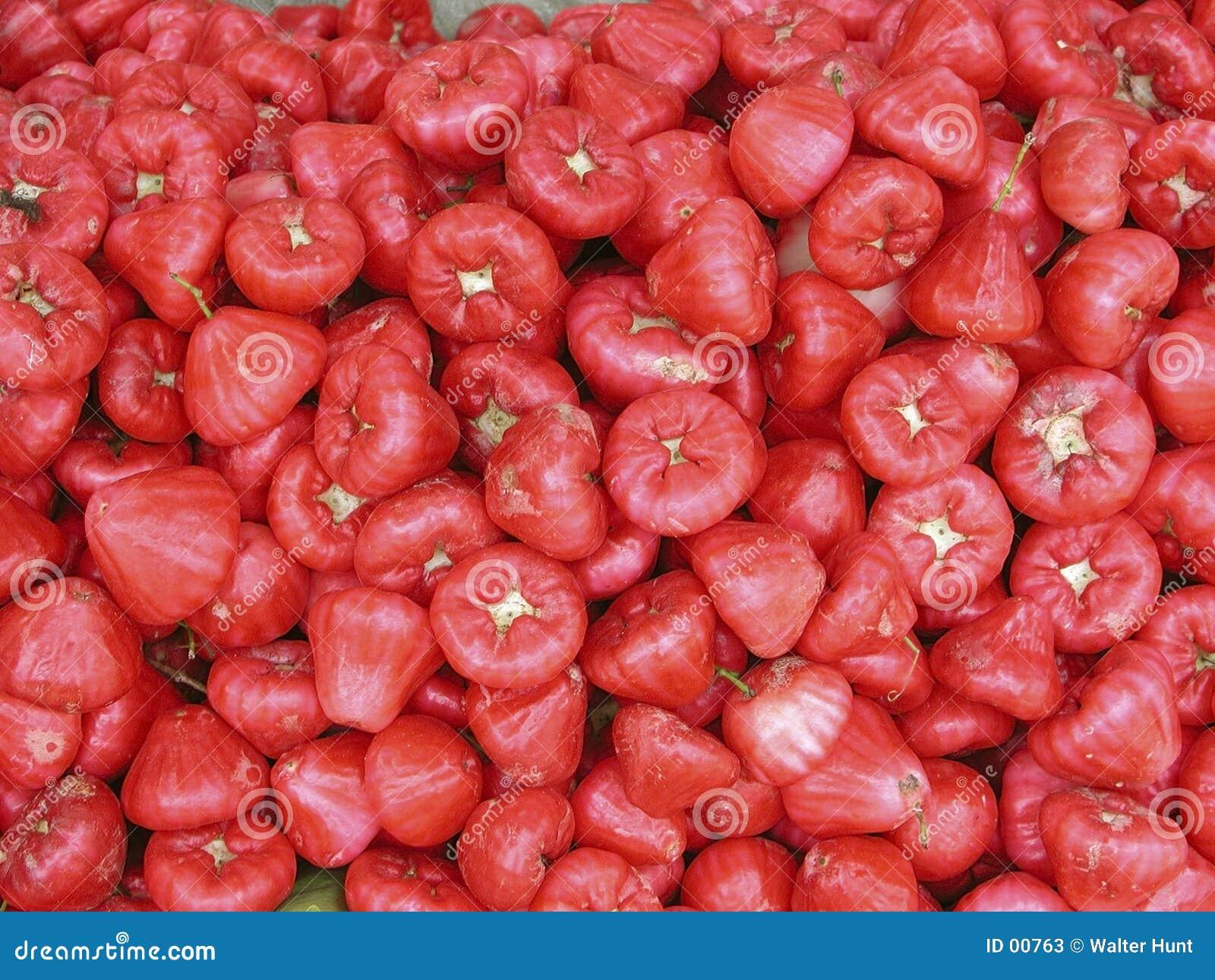 Nam Frucht