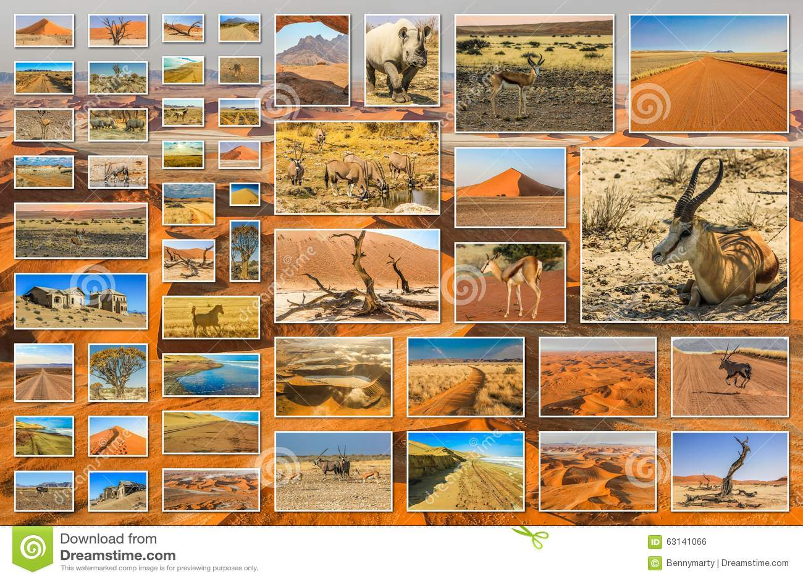 Skeleton Coast Namibia >> Namibia desert collage stock photo. Image of quiver ...