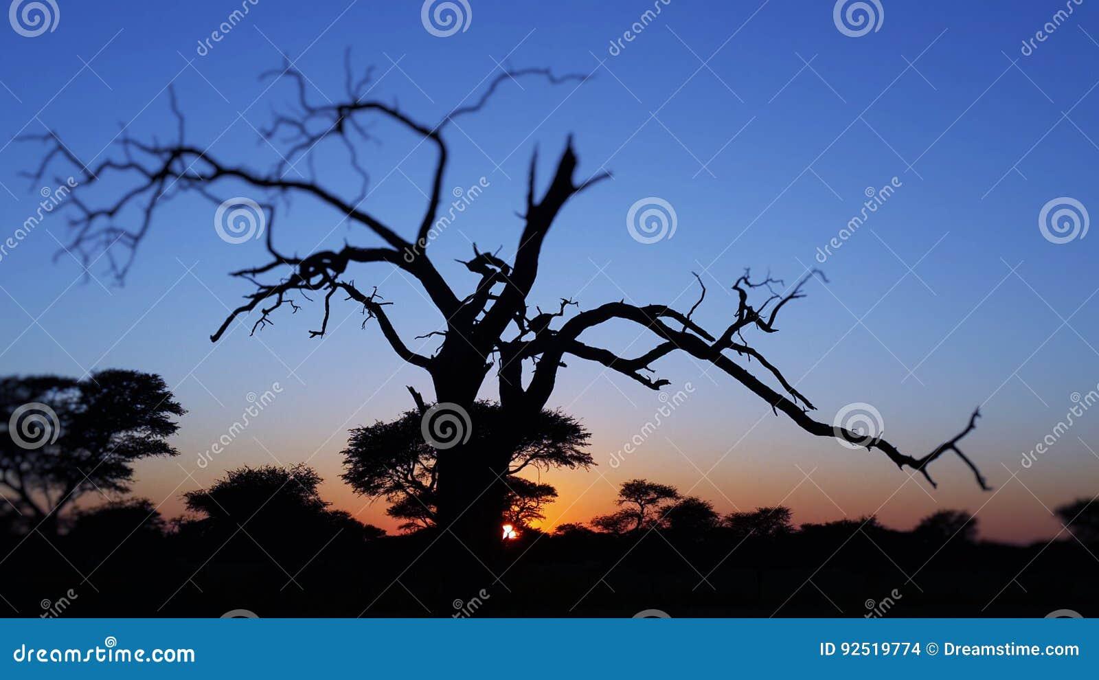 Namibia solnedgång