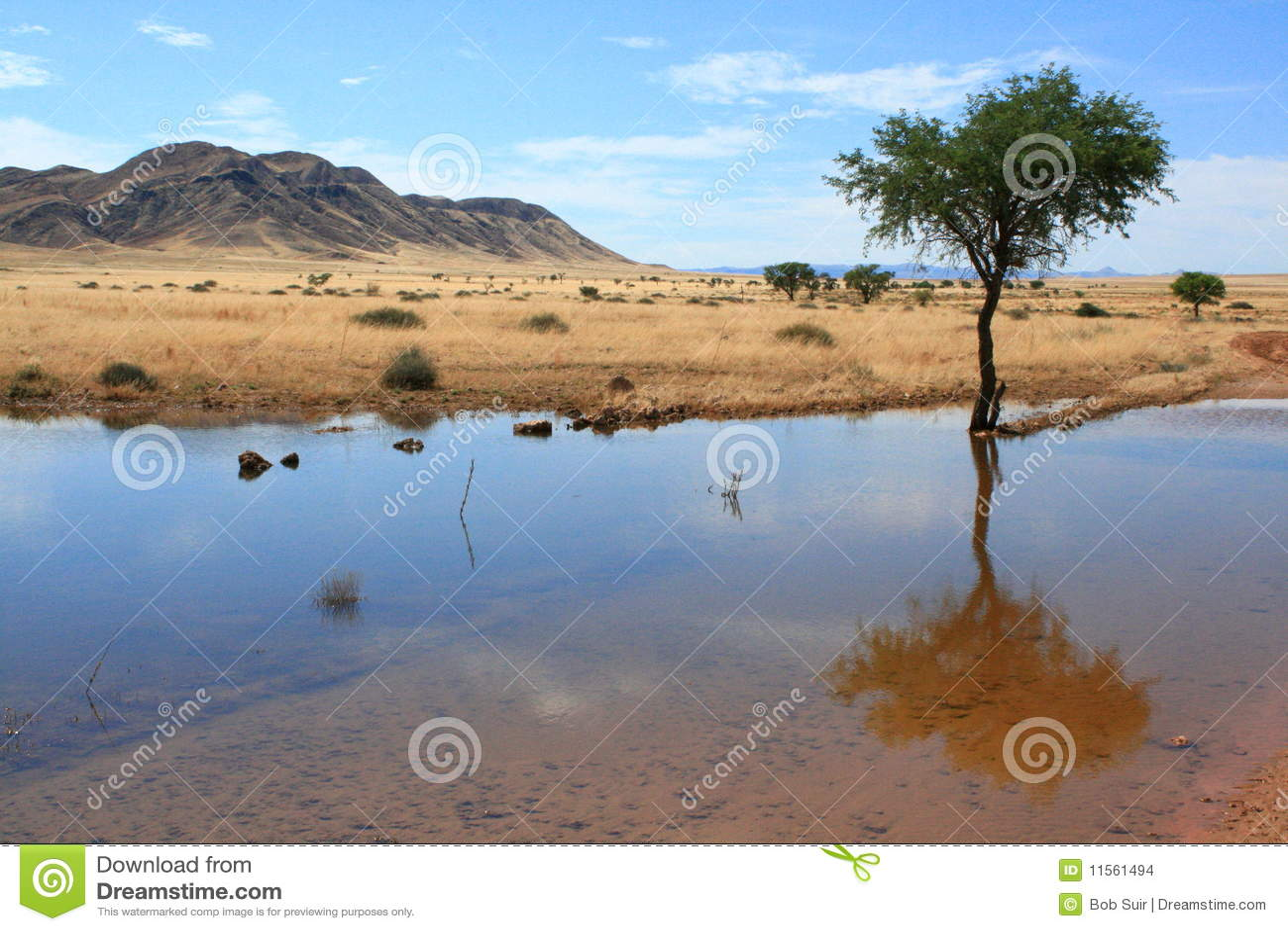 Namibian landscape water