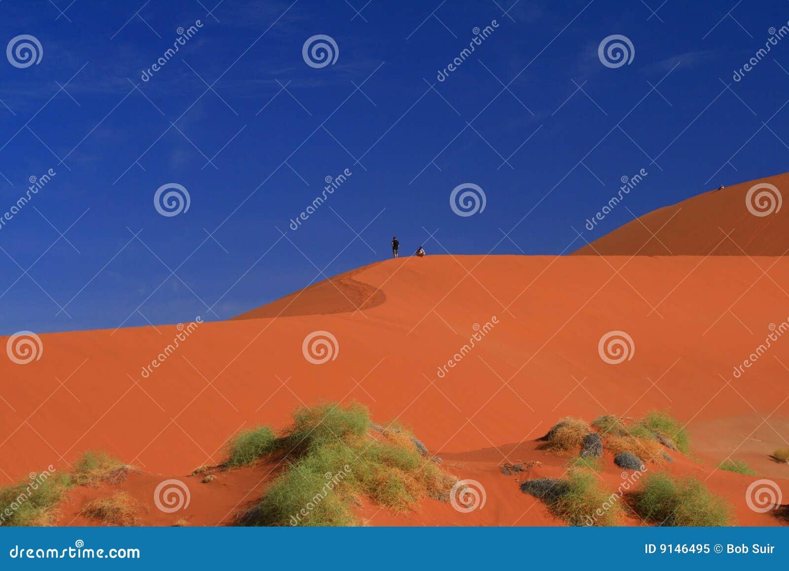 Namibian red desert dune