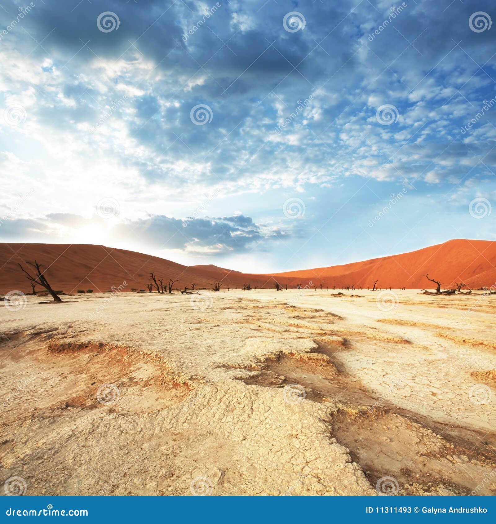 Namibische Wüste auf Sonnenaufgang