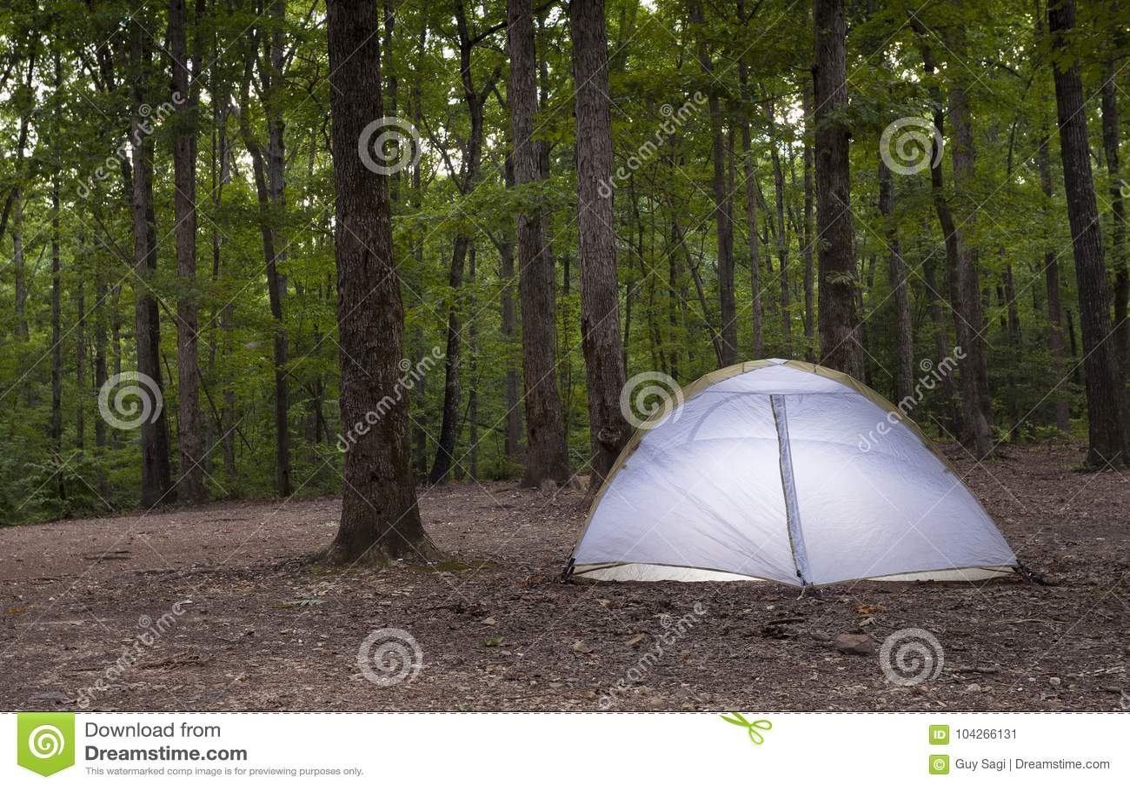 Namiot w ciemnienie lesie