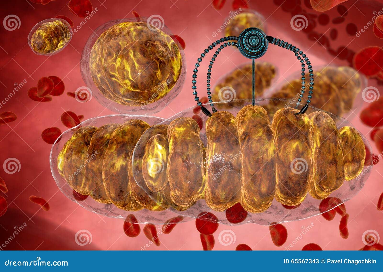 Nanorobot Y Mitochondrion Futuro Anatómico Del Concepto Médico ...
