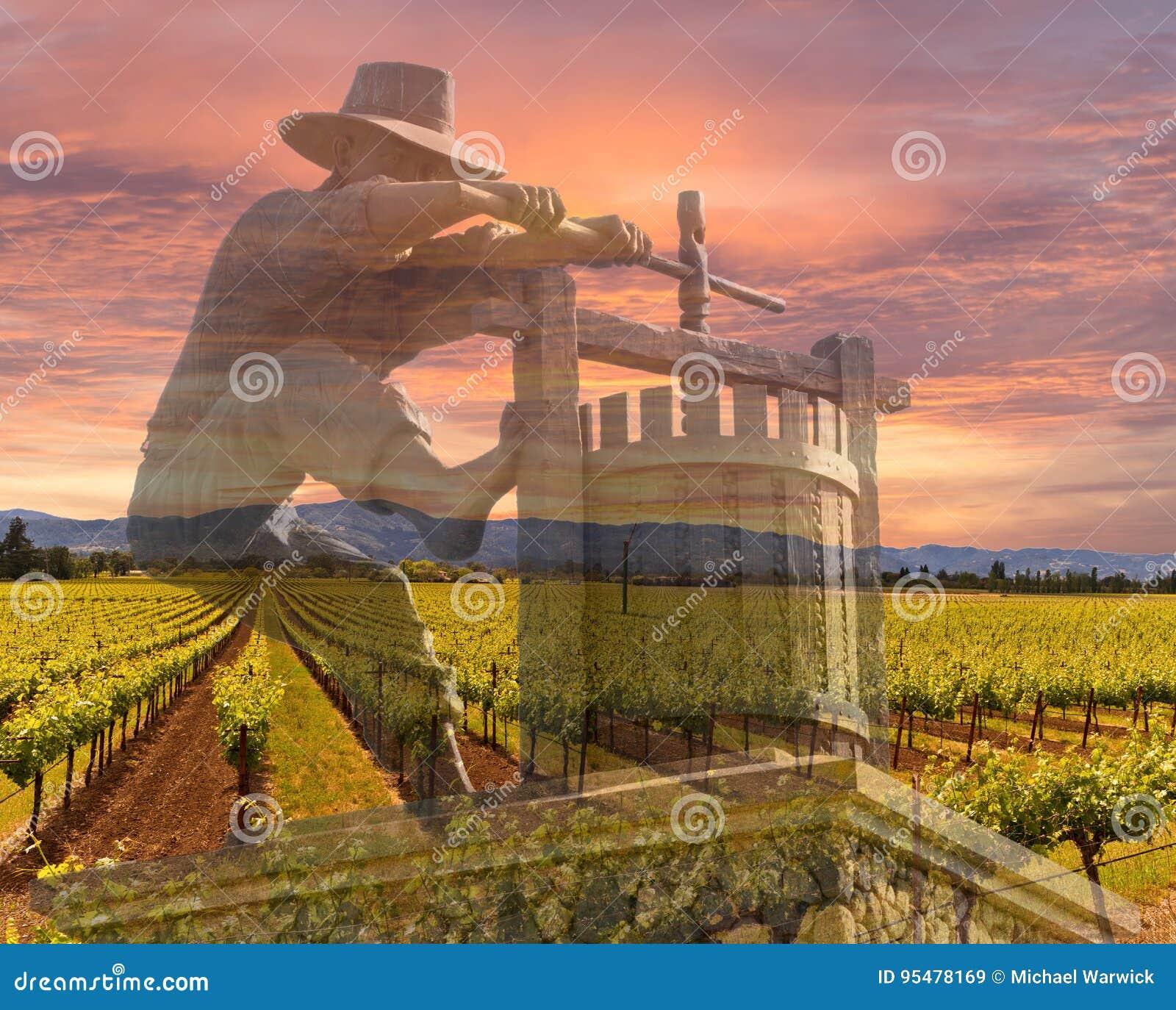 Napa Dolinni winnicy, wiosna, góry, wschodu słońca niebo