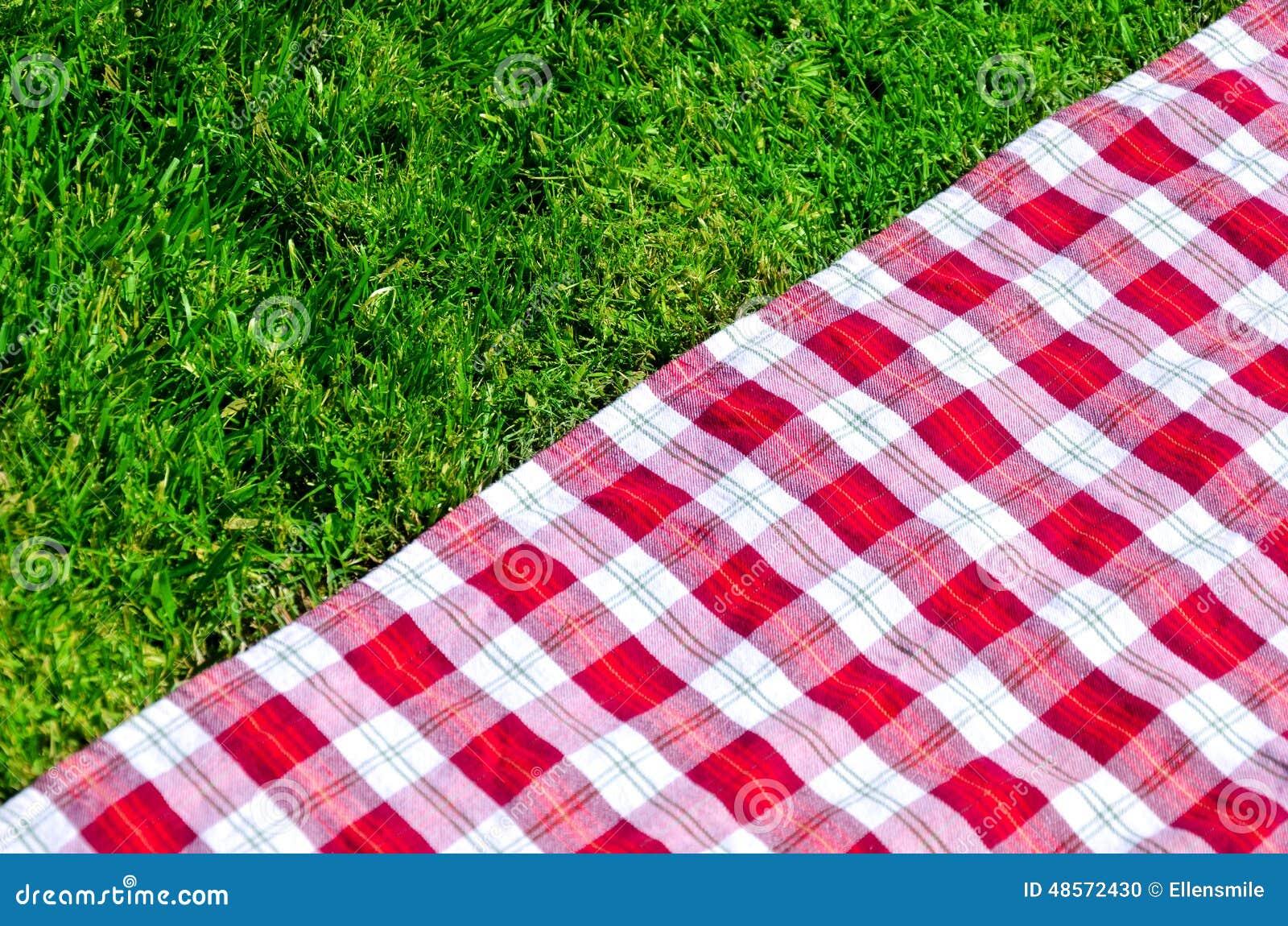 nappe de pique nique sur l herbe photo stock image 48572430