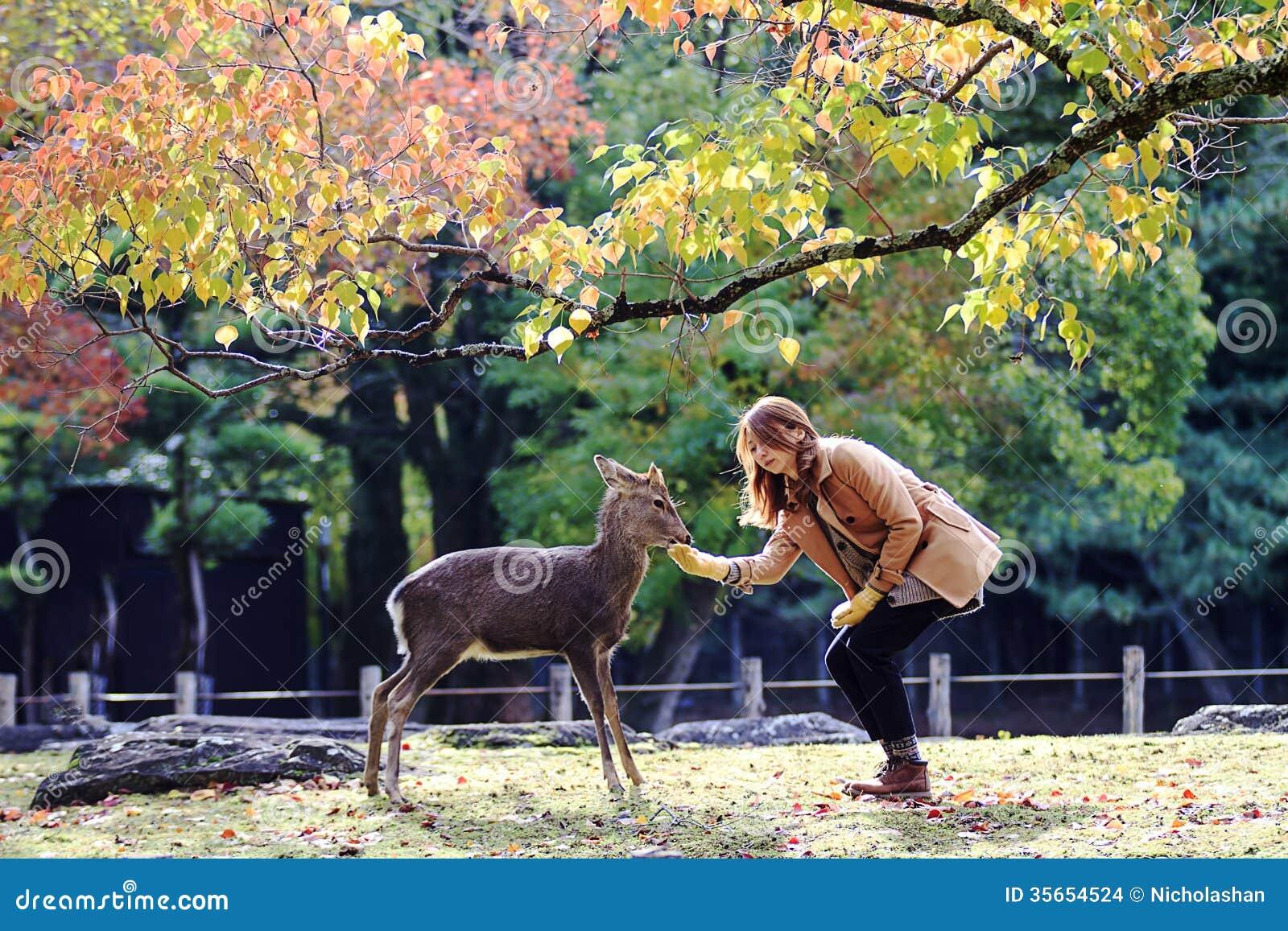 Nara Venture - Nara Tourism - Home | Facebook