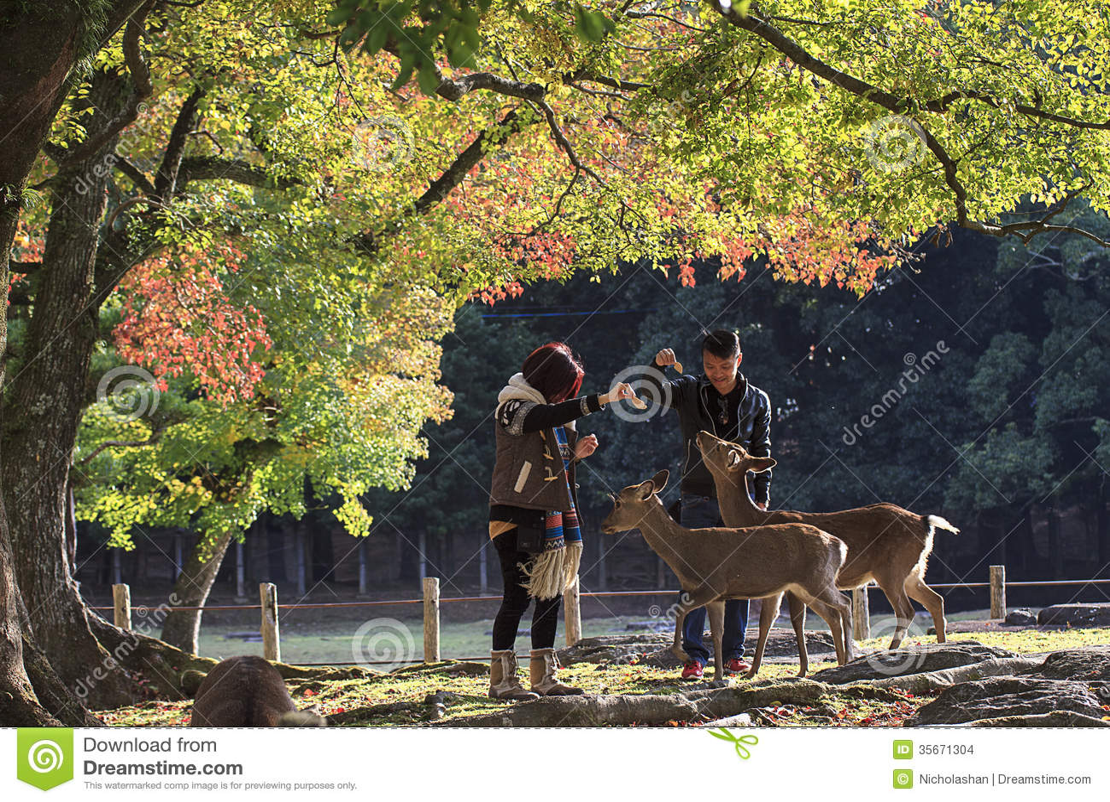 ShuYou-Ikaruga Nara Tourism VR- on the App Store