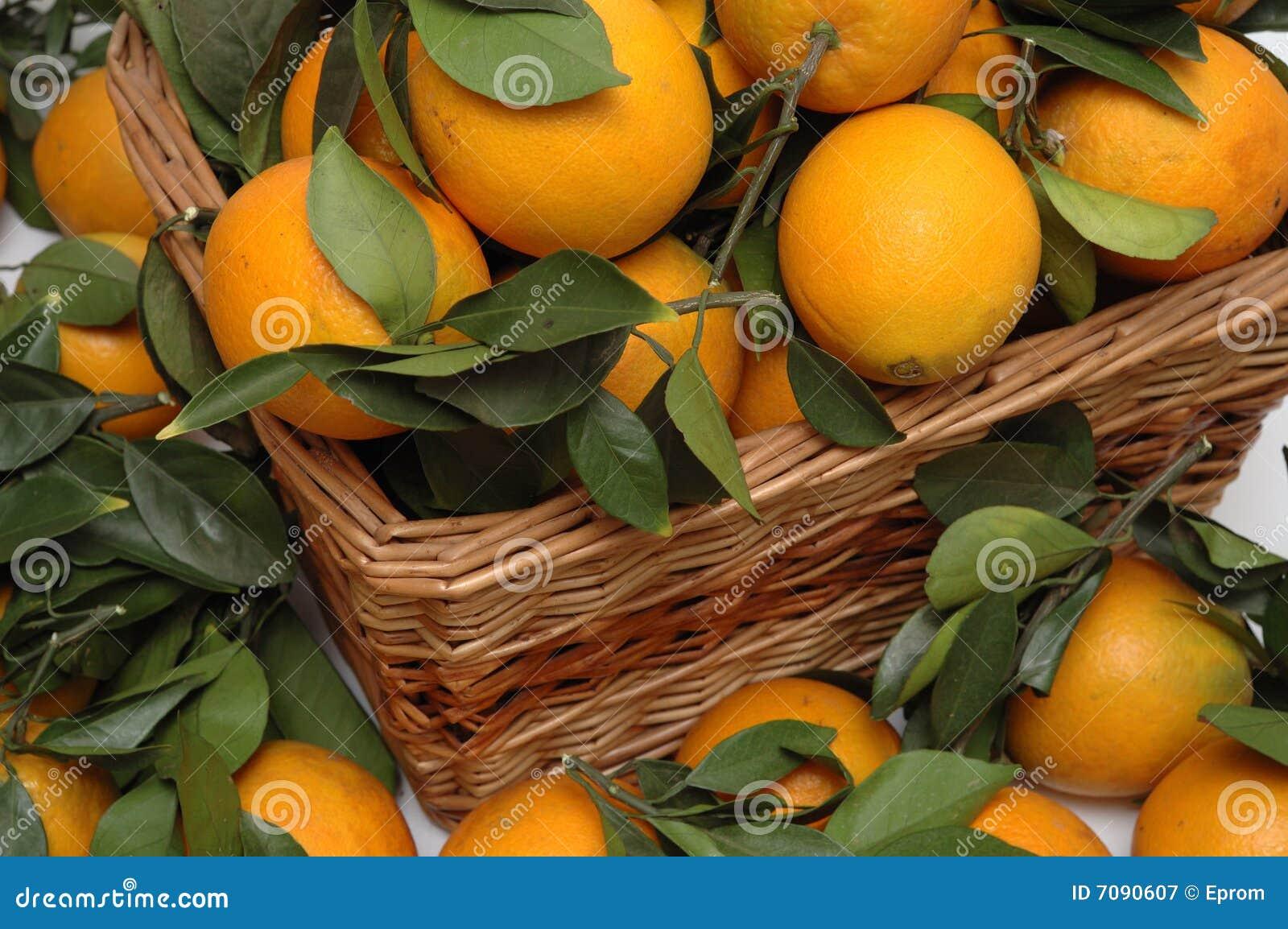Naranjas en la cesta