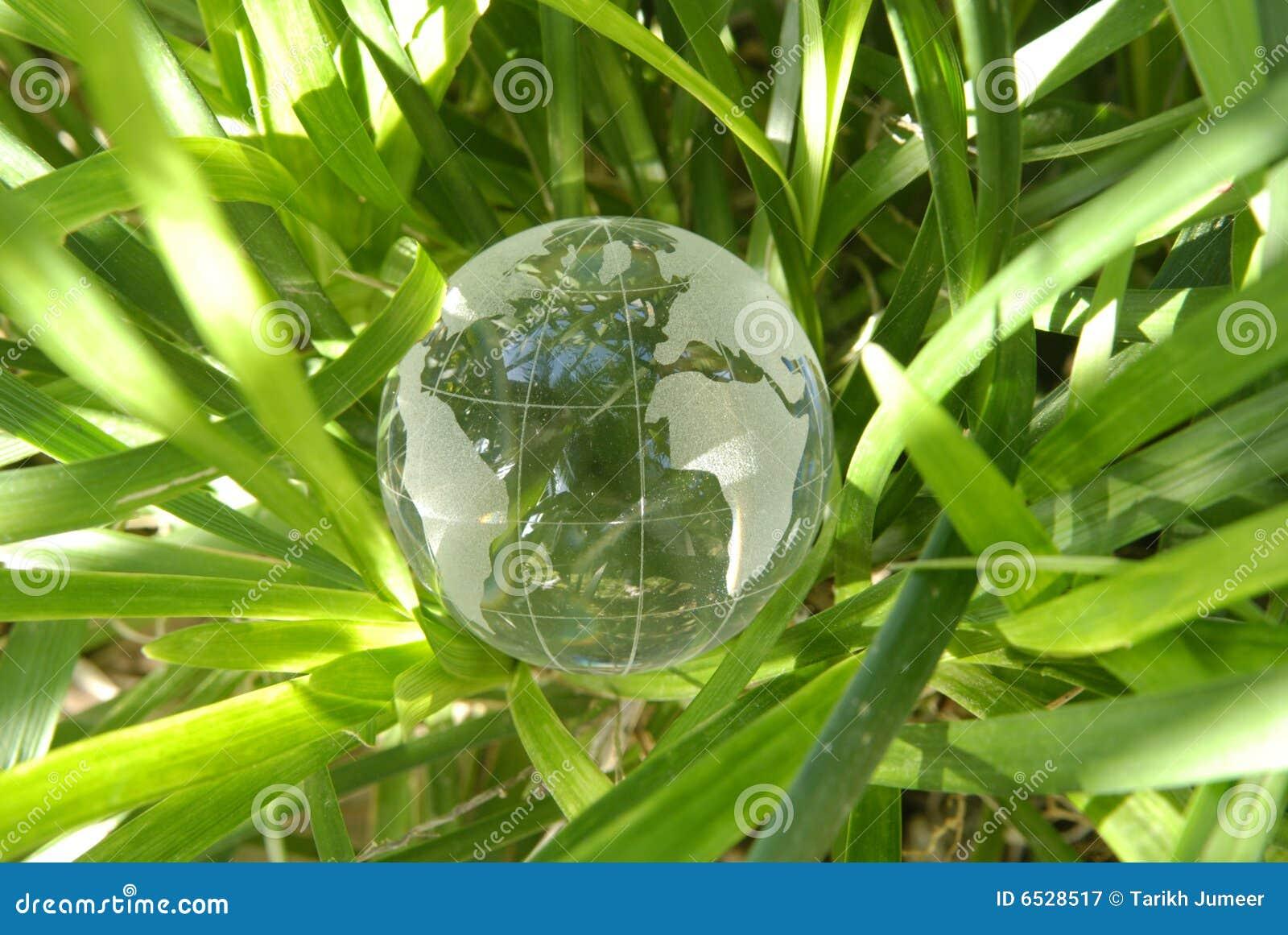 Narastający glebowy świat