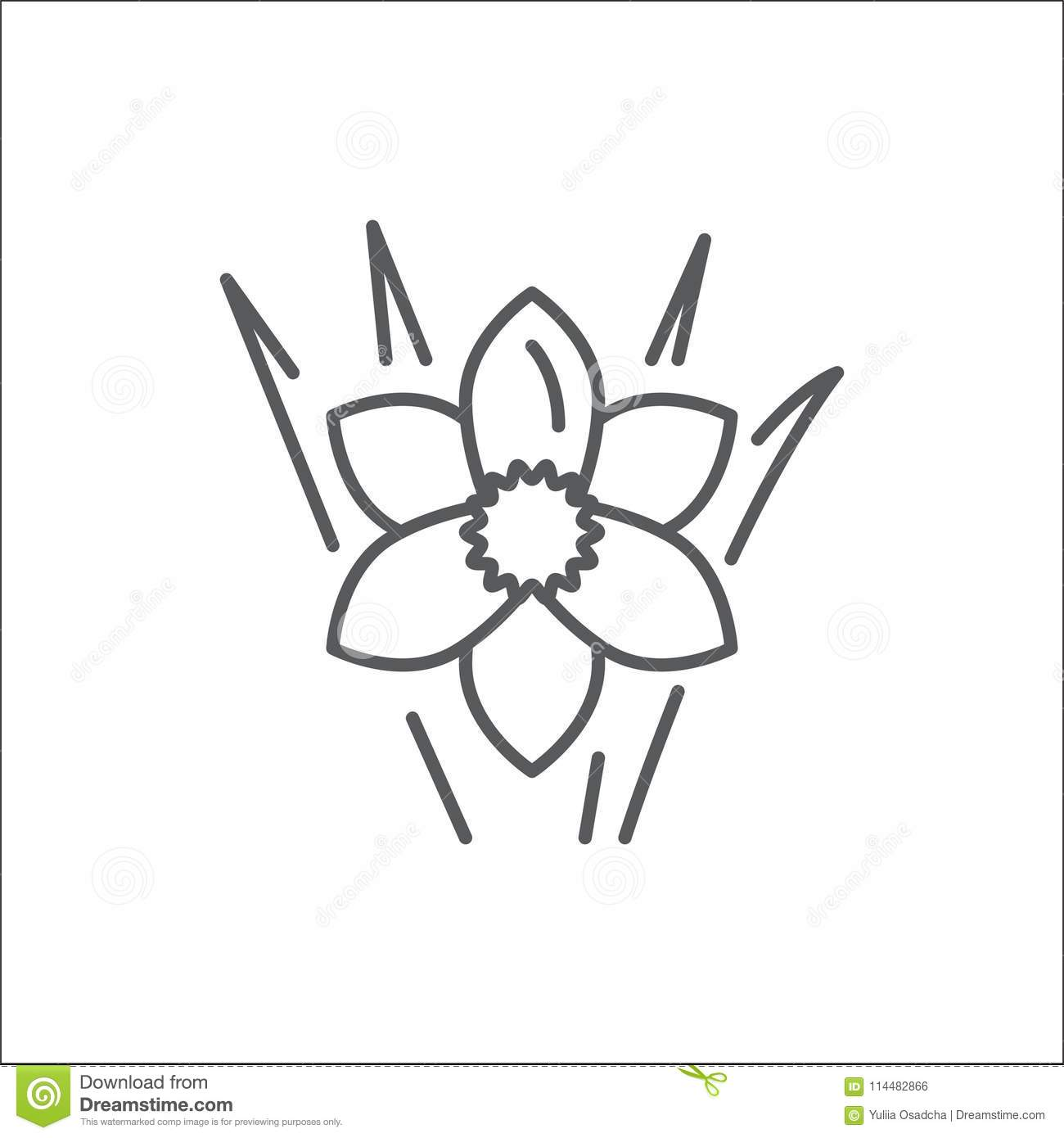 Narcissus editable line icon beautiful spring flower pixel perfect narcissus editable line icon beautiful spring flower pixel perfect vector illustration isolated on white background outline floral symbol can be used as mightylinksfo