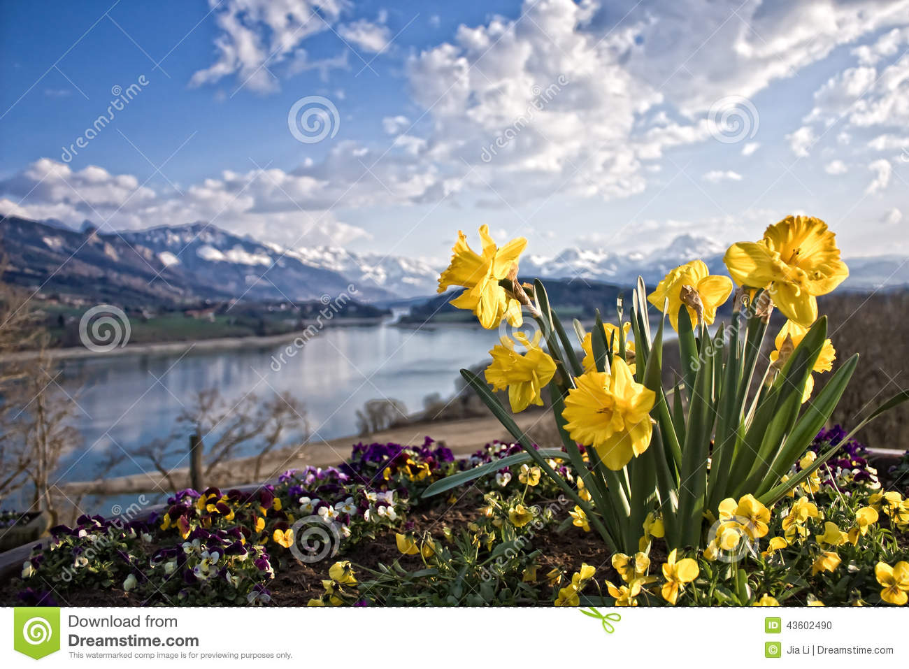 narcissus mountain and lake stock photo image  narcissus mountain and lake