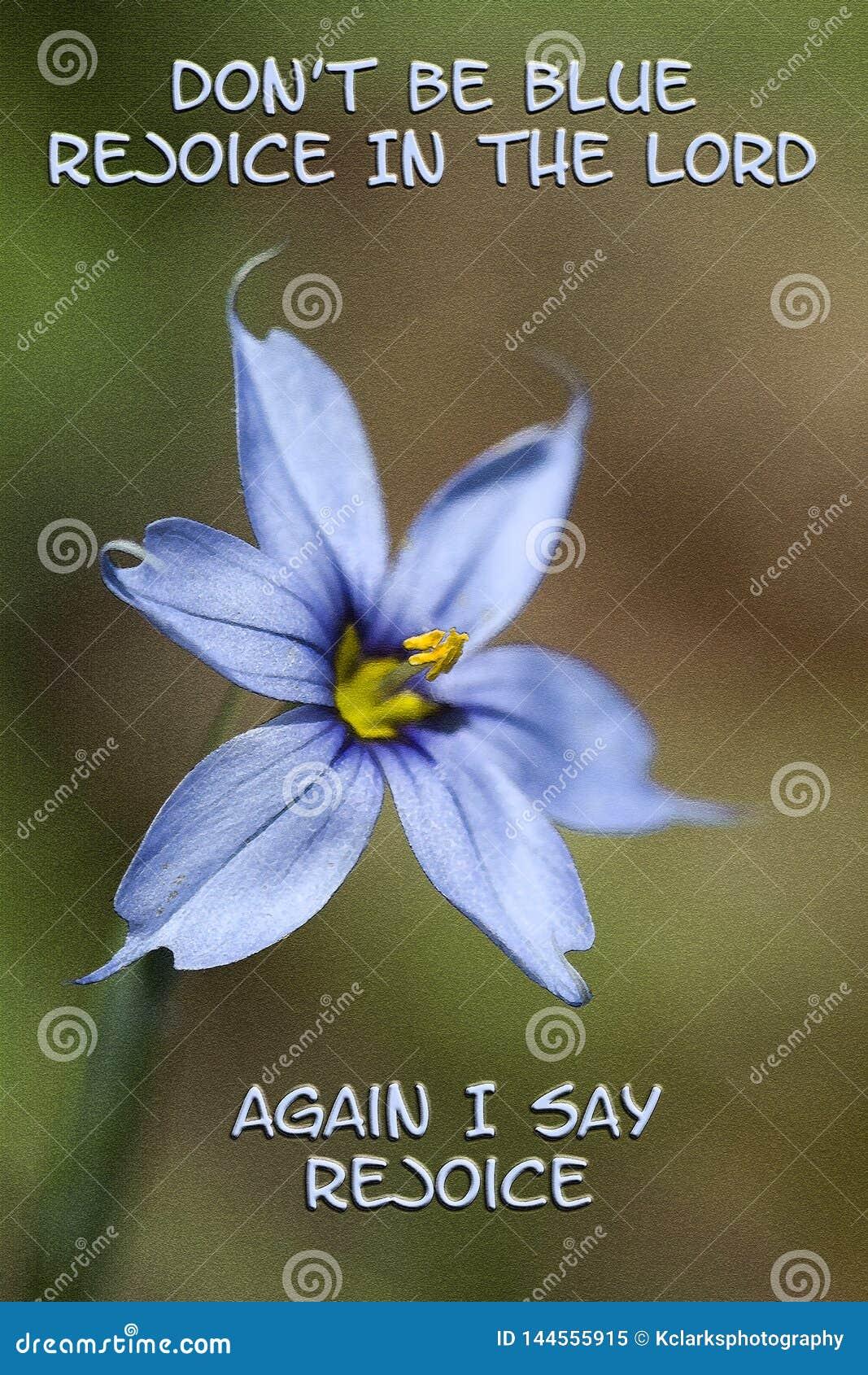 Narrowleaf är blåögt gräs inte blått jublar i Herren