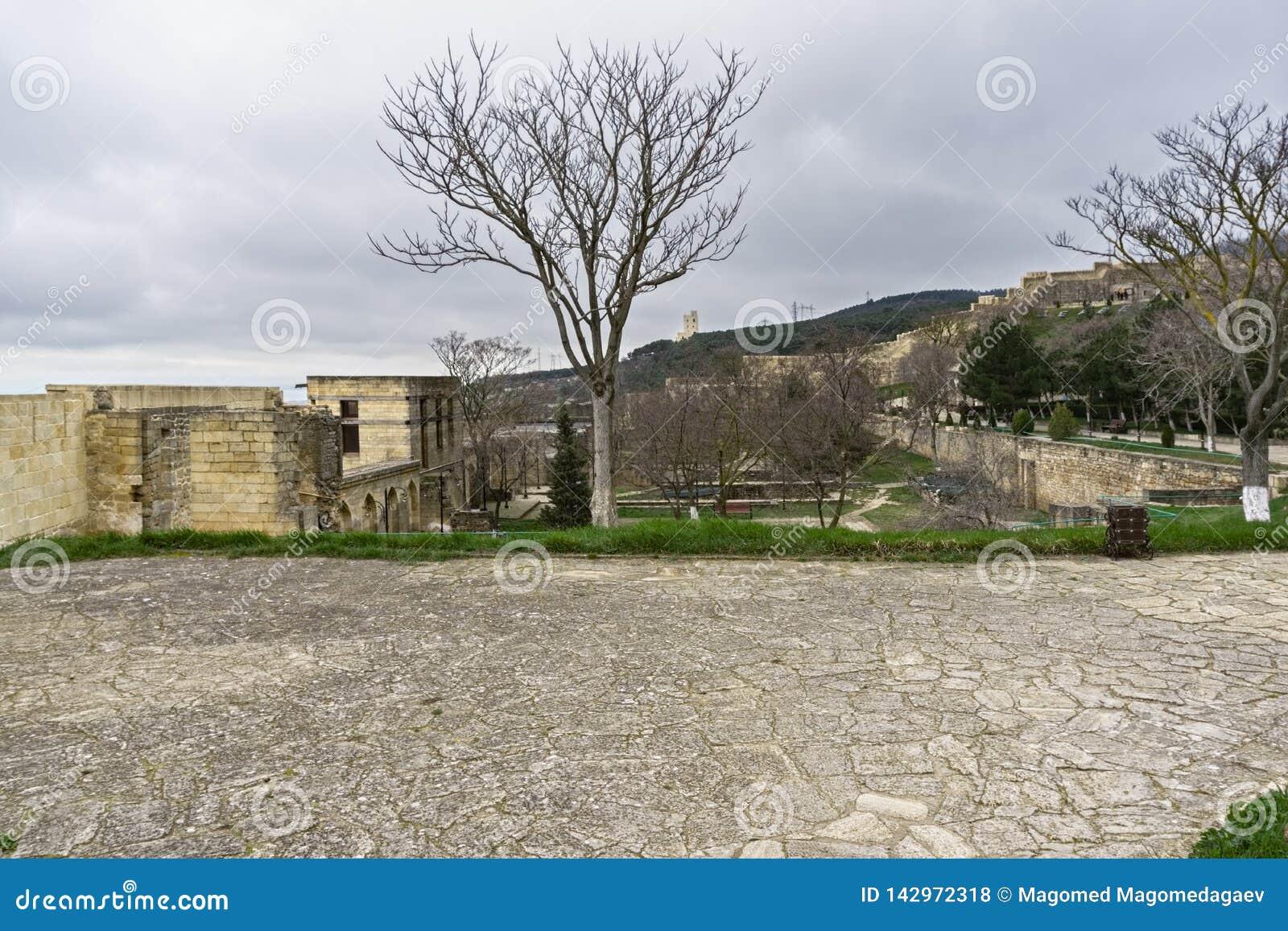 Naryn-kalayard