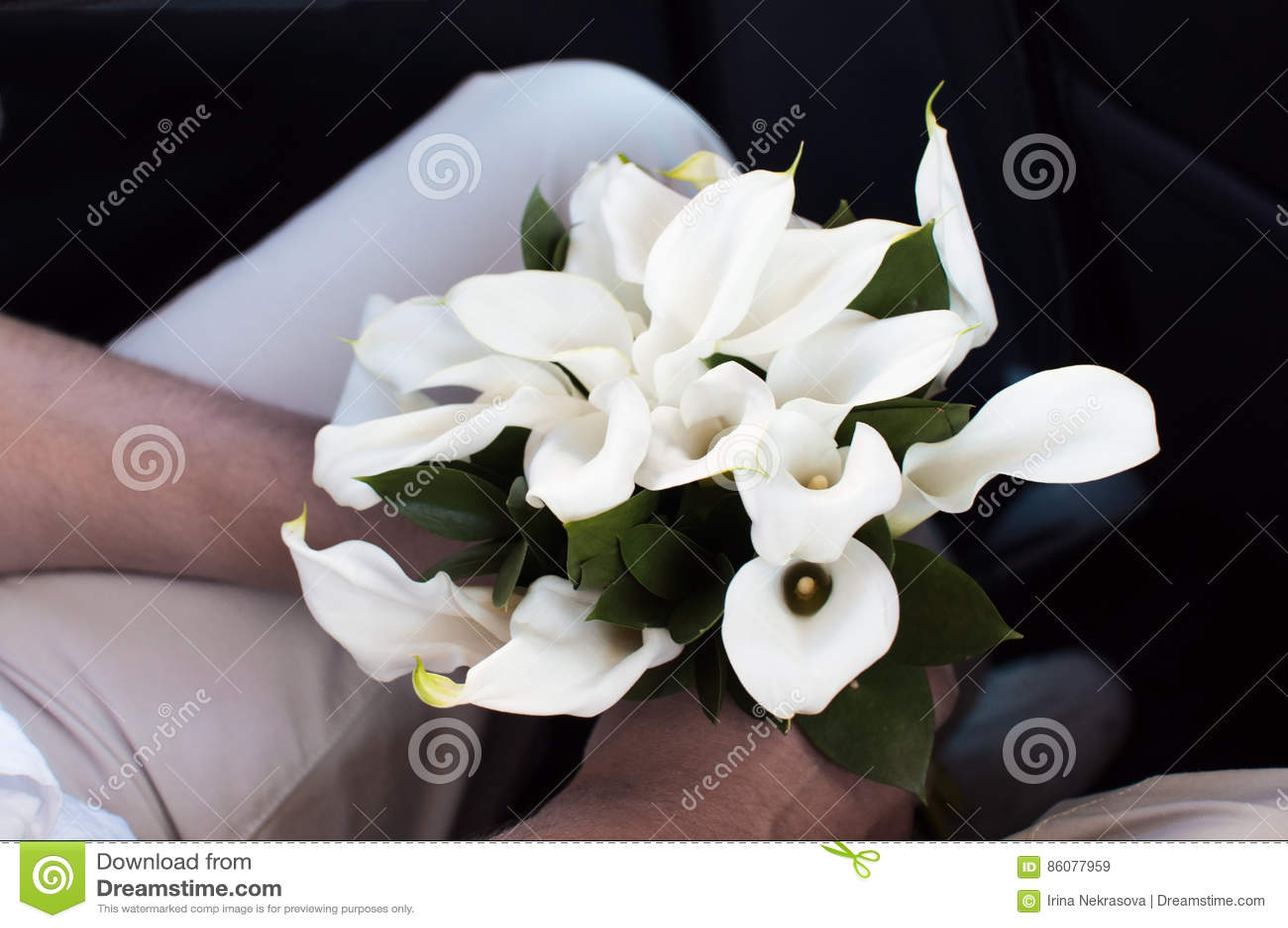Narzeczony trzyma ślubnego bukiet kalie kwitnie