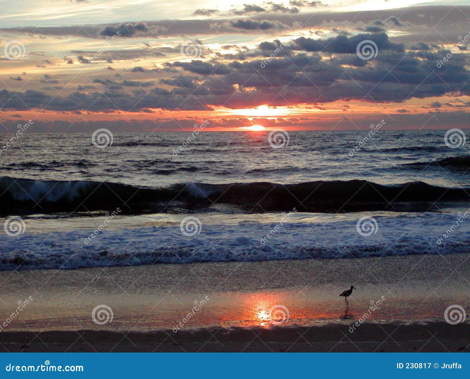 Nascer do sol 7 do oceano