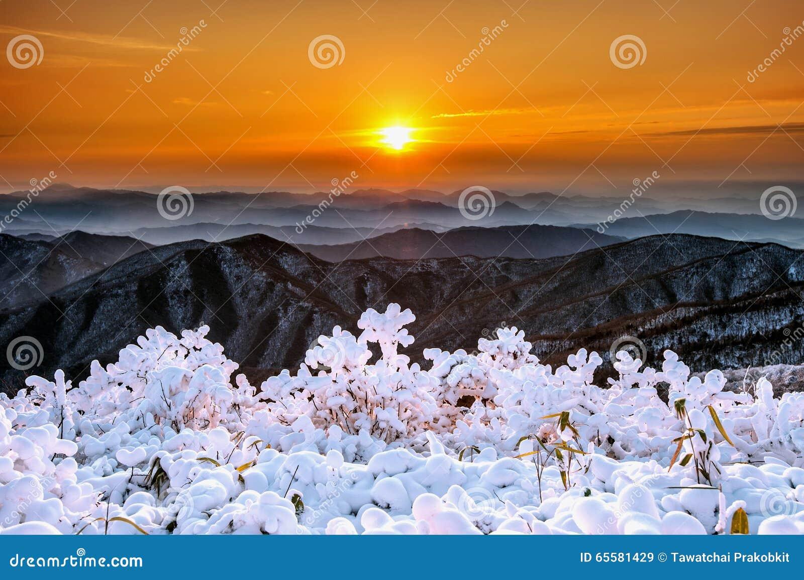 Nascer do sol bonito nas montanhas de Deogyusan cobertas com a neve no inverno, Coreia