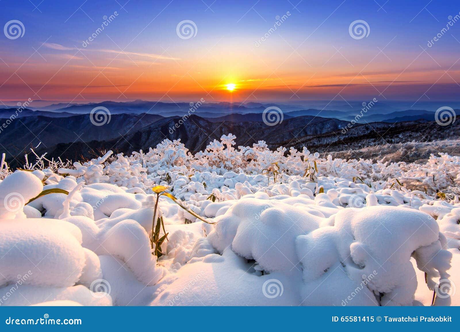 Nascer do sol bonito nas montanhas de Deogyusan cobertas com a neve no inverno do wiin, Coreia